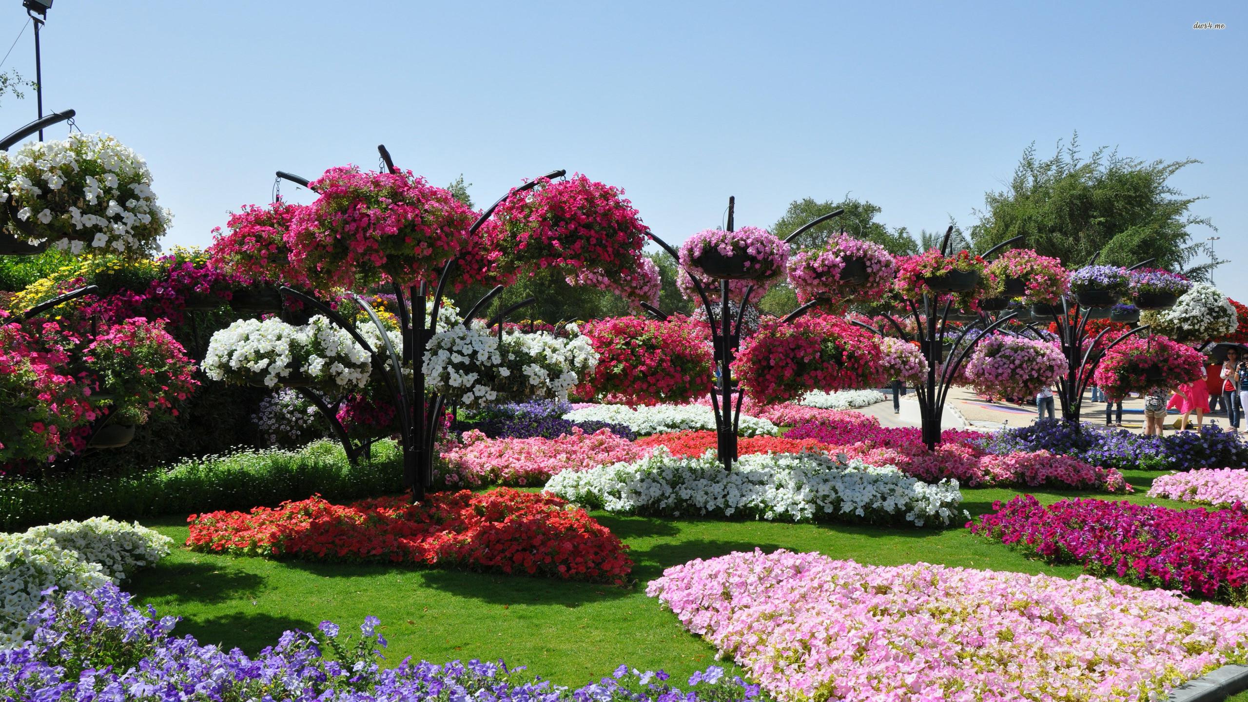 Res: 2560x1440, ... Beautiful beach garden wallpaper  ...