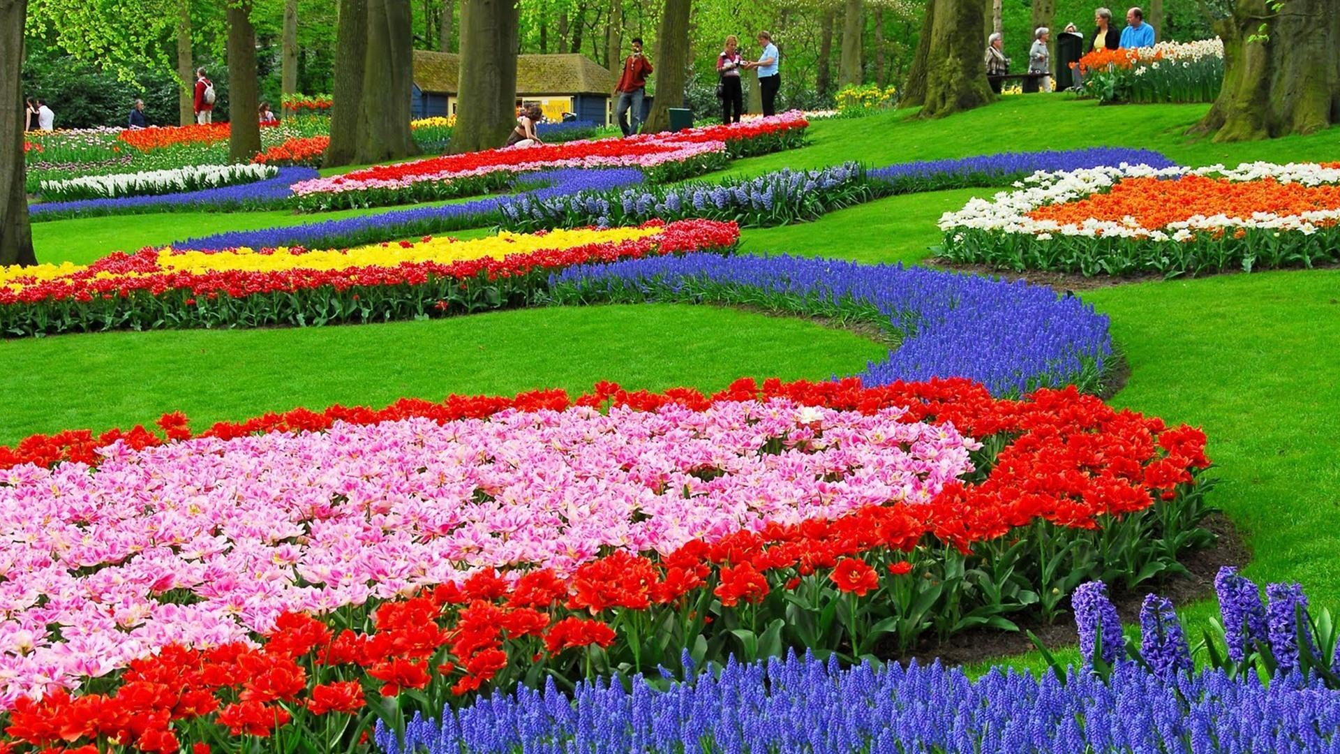 Res: 1920x1080, beautiful garden wallpaper free download #1402446