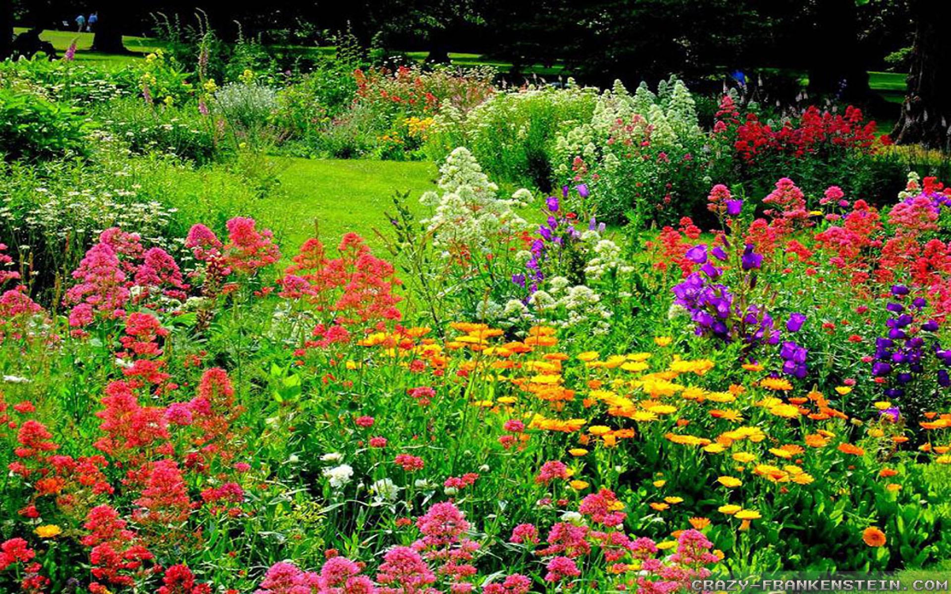 Res: 1920x1200, Beautiful Flower Garden Wallpaper