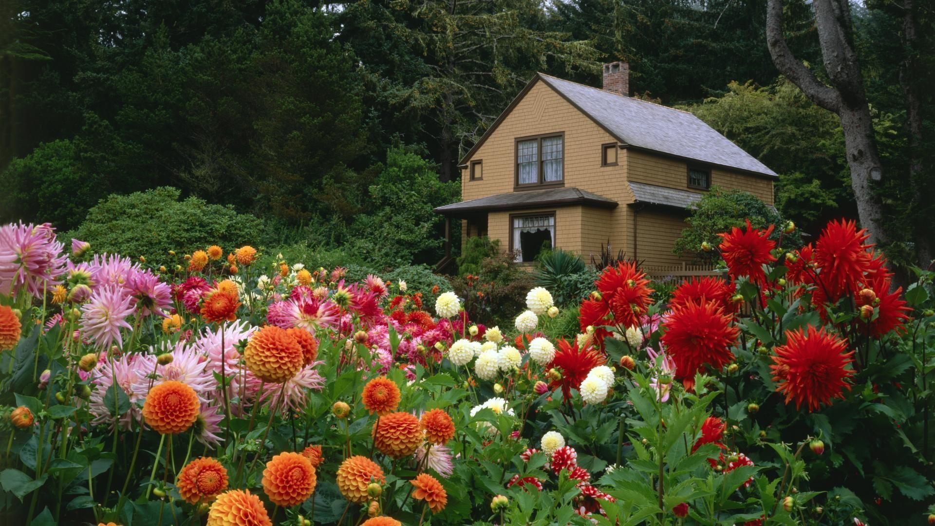 Res: 1920x1080, amazing gardens