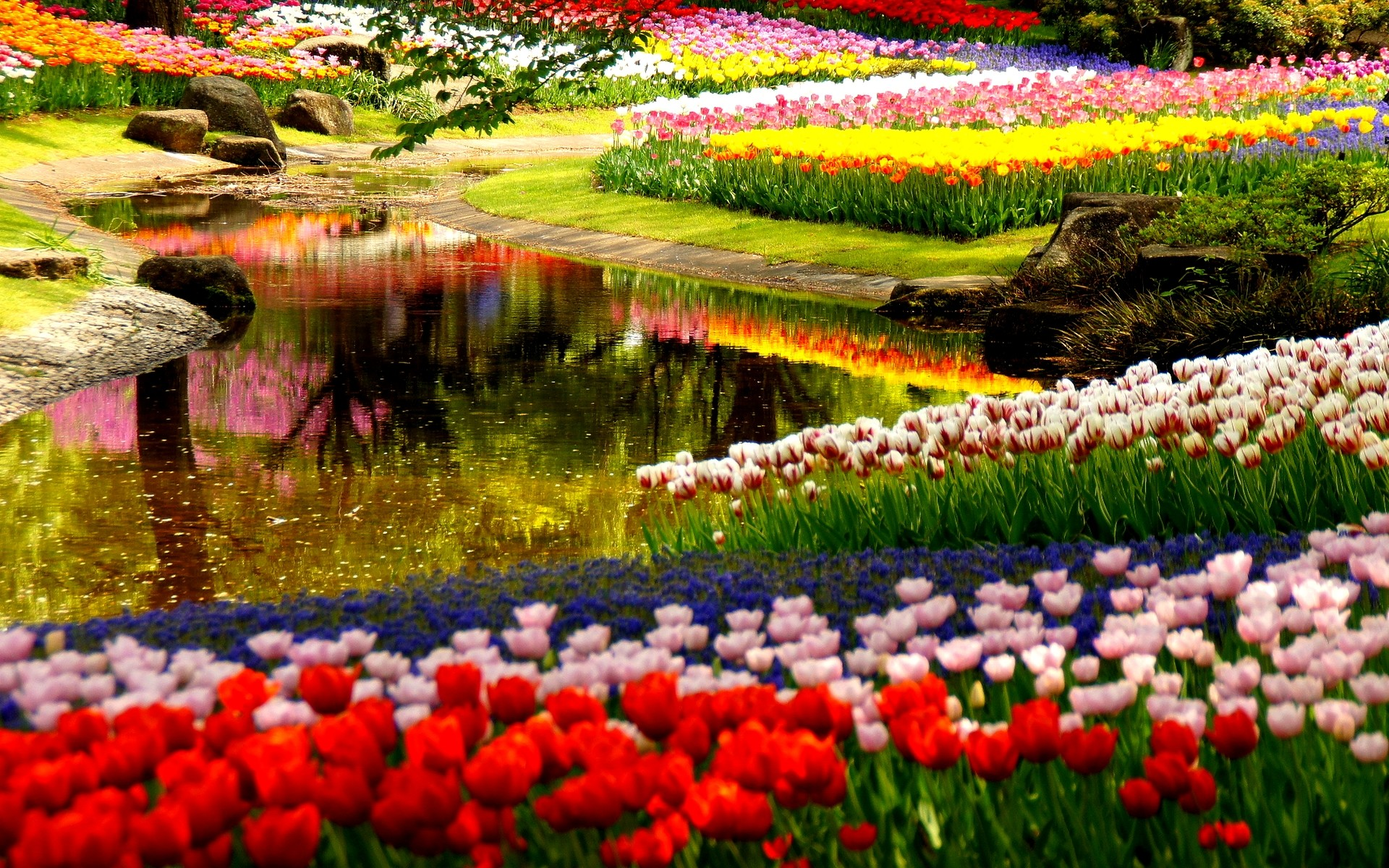 Res: 1920x1200, High Quality Beautiful Gardens Backgrounds HD Wallpapers