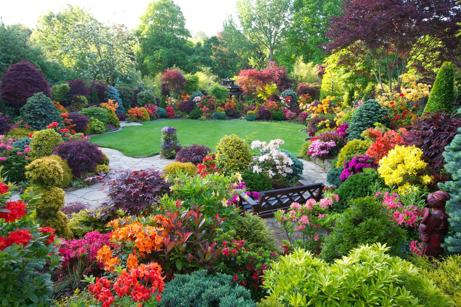 Res: 1920x1200, garden wallpapers best wallpapers flowers