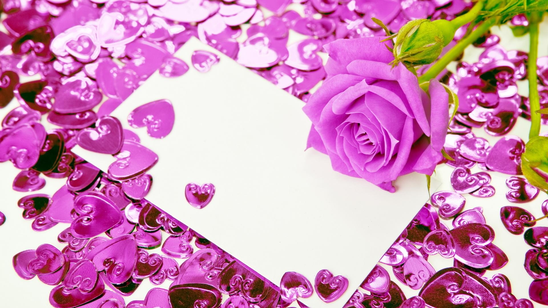 Res: 1920x1080, Viewing Gallery For - Purple Hearts With Roses
