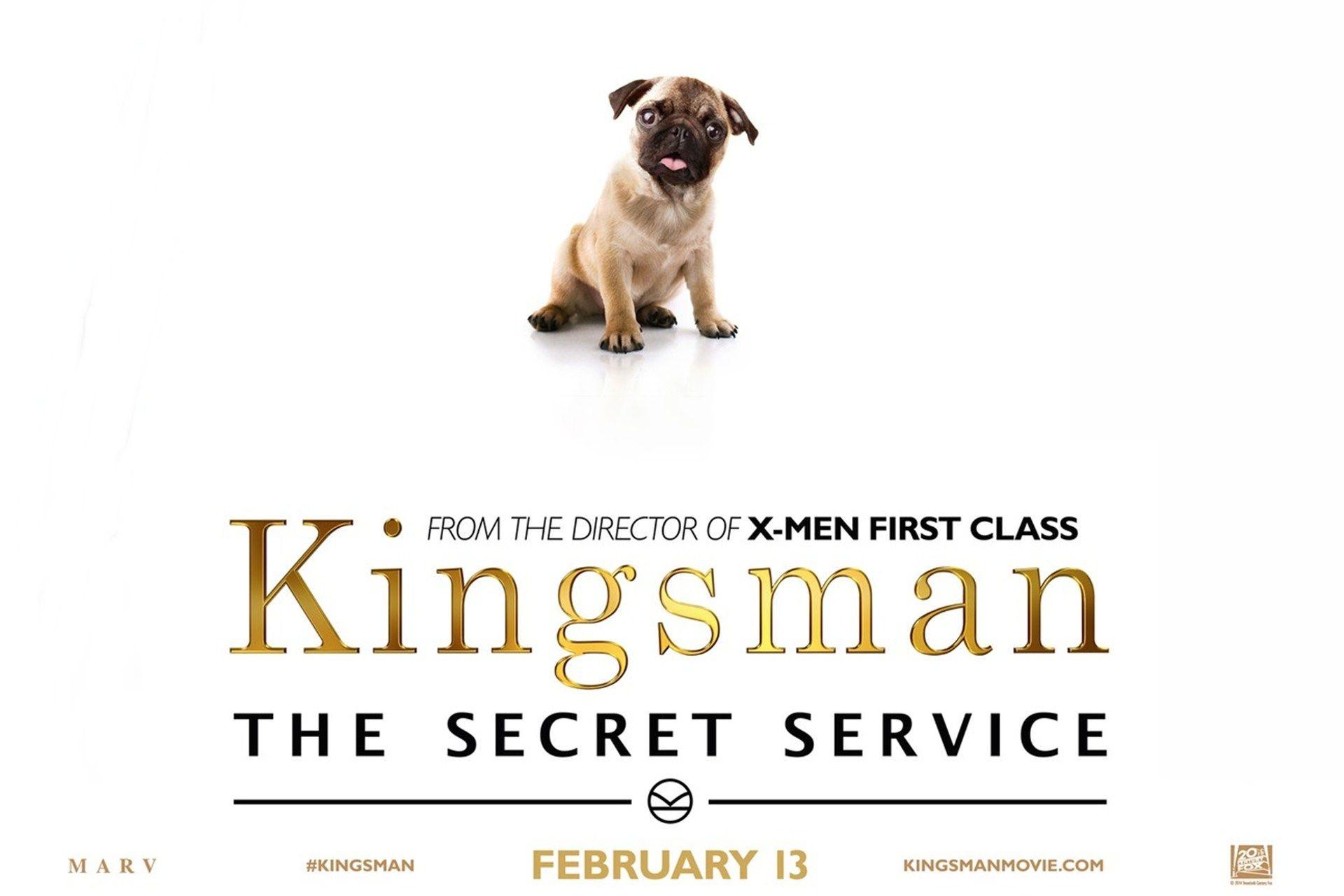 Res: 1920x1280, Kingsman The Secret Service (2015) - Puppy Solo - Wallpaper 006 - Click to