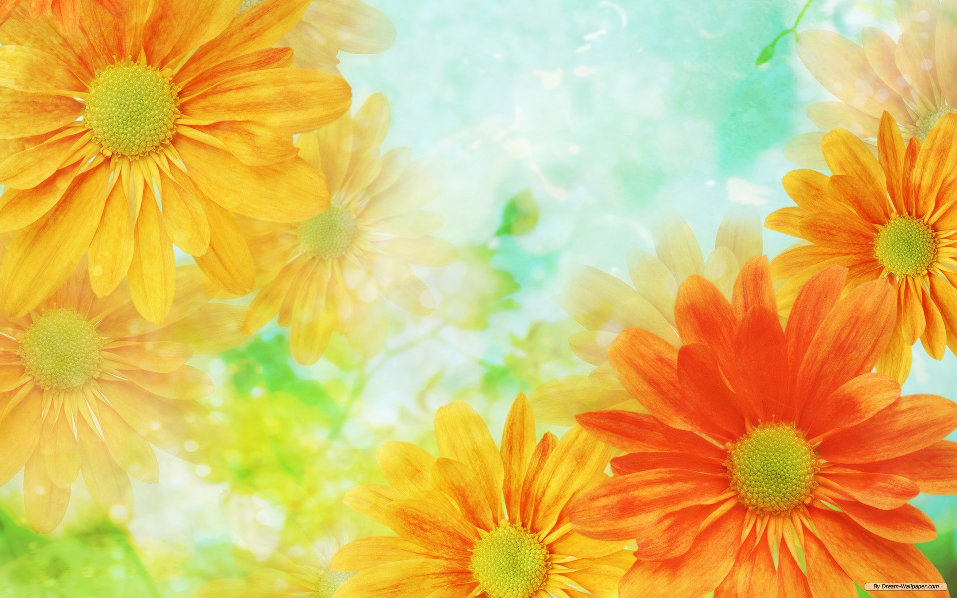 Res: 1920x1200, Download Convert View Source. Tagged on : Flower Background Background  Wallpaper ...