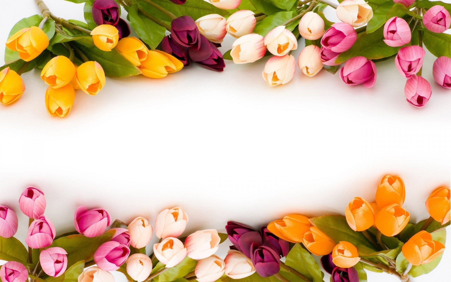 Flower Background Wallpapers Hd Wallpaper Collections