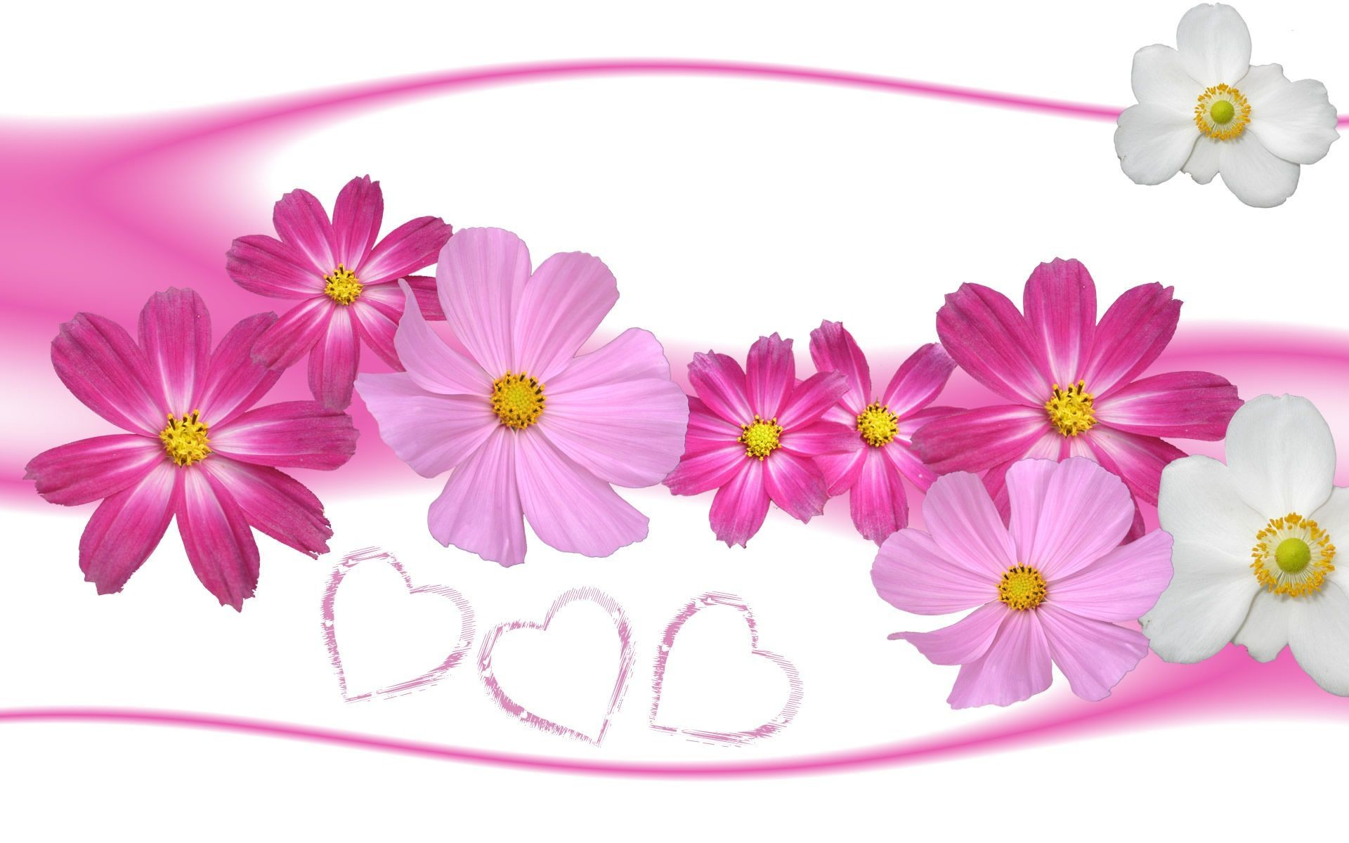 Res: 1920x1200, Wallpaper-flower-Hintergrund-Galerie-(79-Plus)-PIC-WPW101419