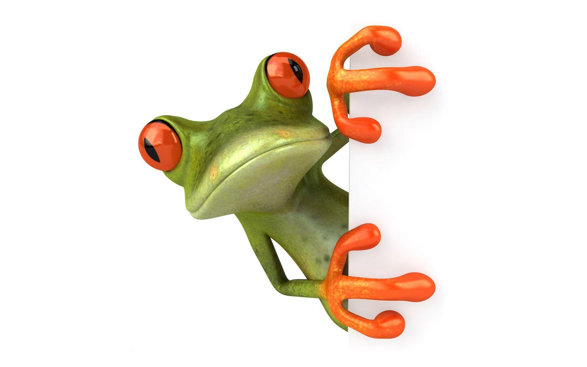 Res: 1920x1200, Cute Frog Wallpaper Phone