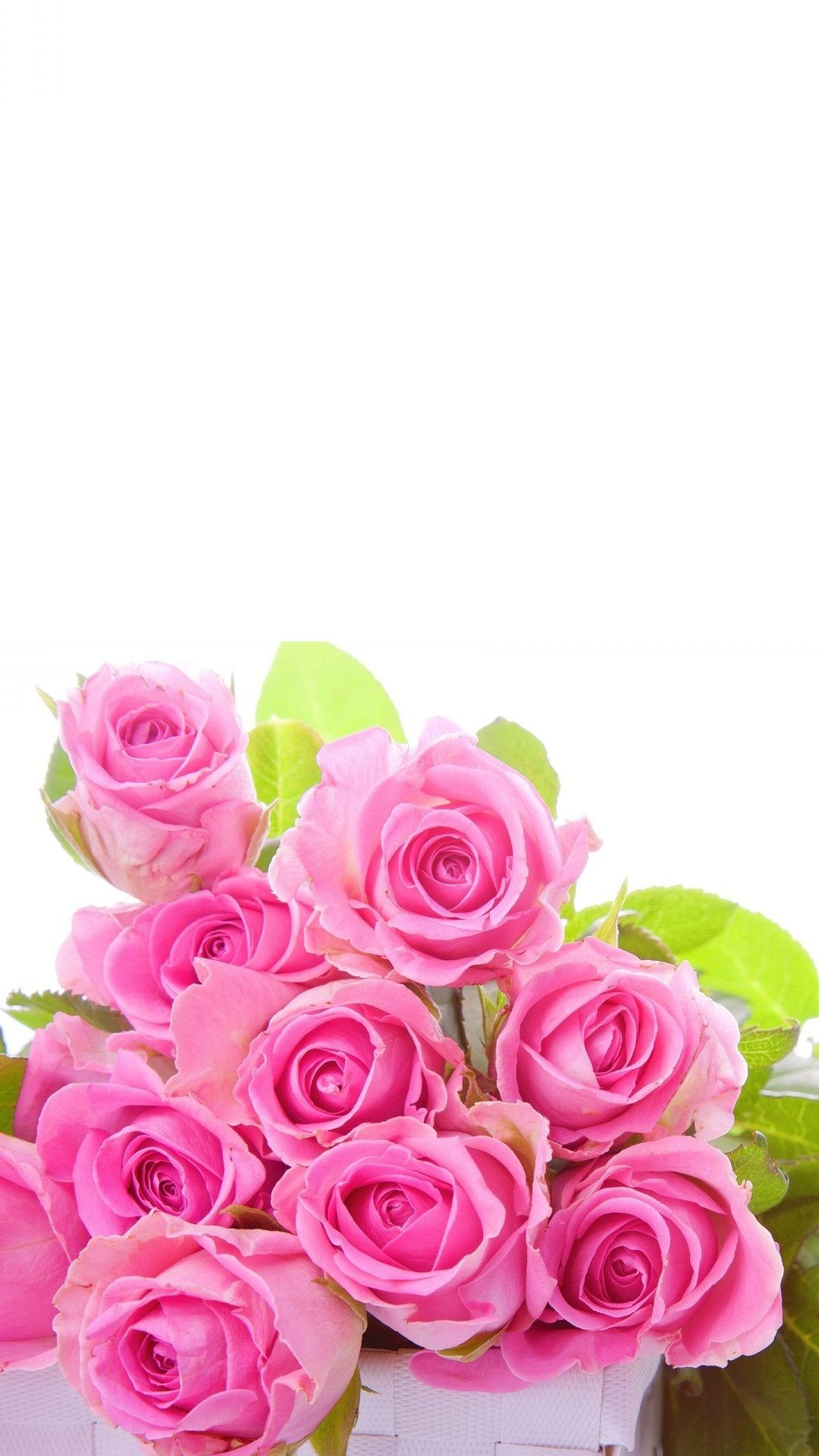 Res: 1080x1920, Pink roses Flower Wallpaper For iPhone - Best iPhone Wallpaper