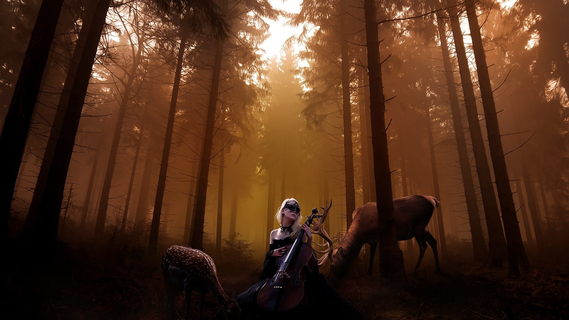 Res: 1920x1080, Cello Backgrounds. Wallpaper: Cello Backgrounds