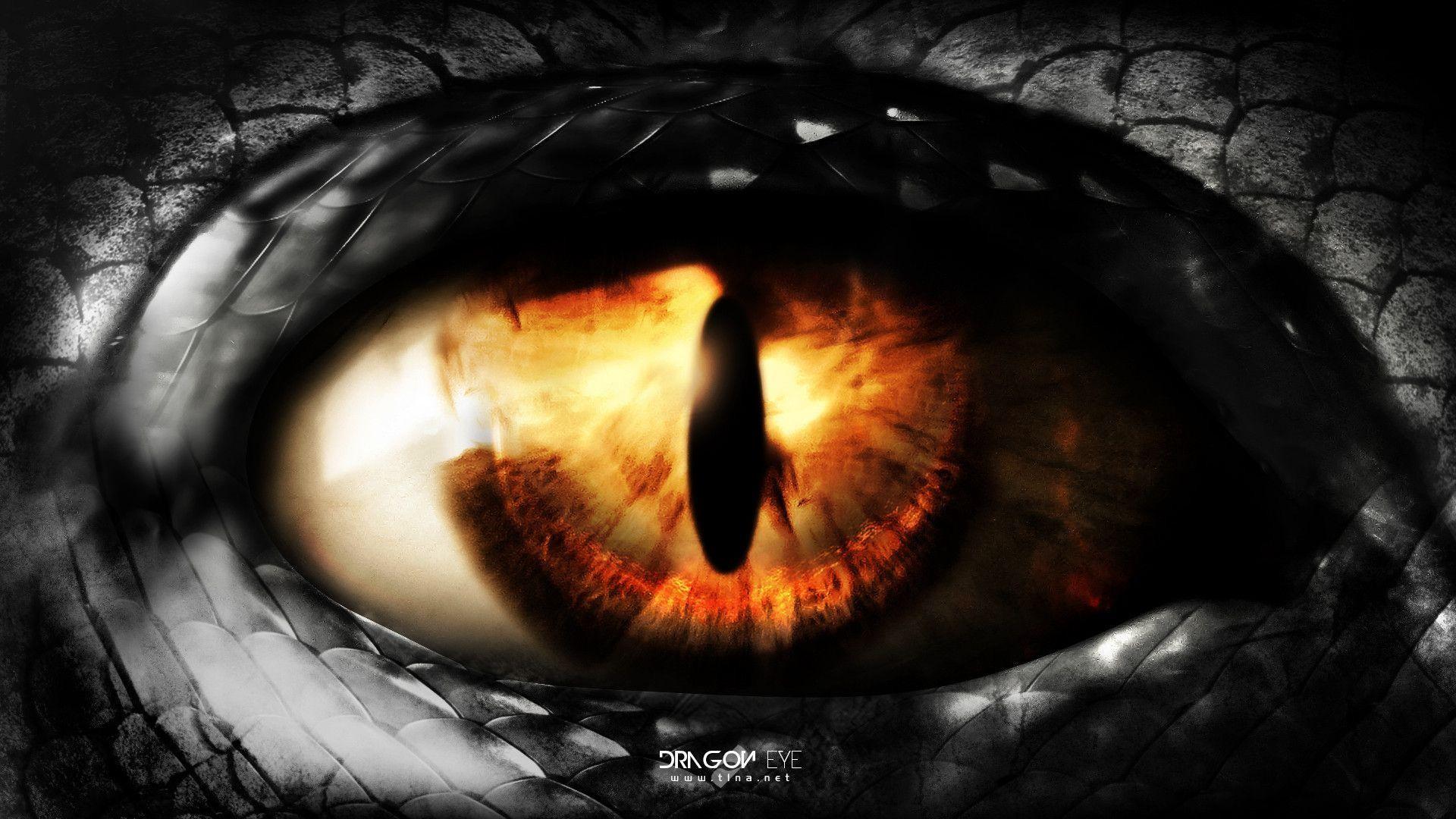 Res: 1920x1080, dragon eye wallpaper