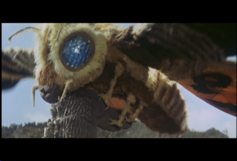 Res: 3000x2029, Scary Movie Photos : Mothra vs Godzilla Photo Gallery