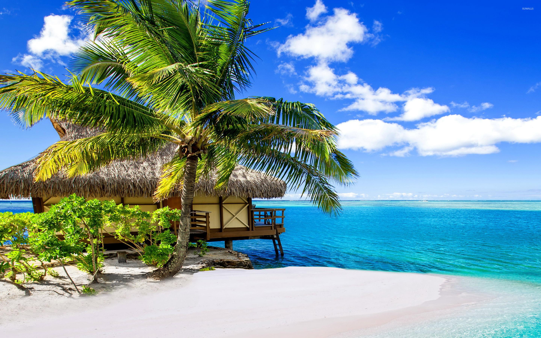 Res: 2880x1800, Bora Bora Resort wallpaper