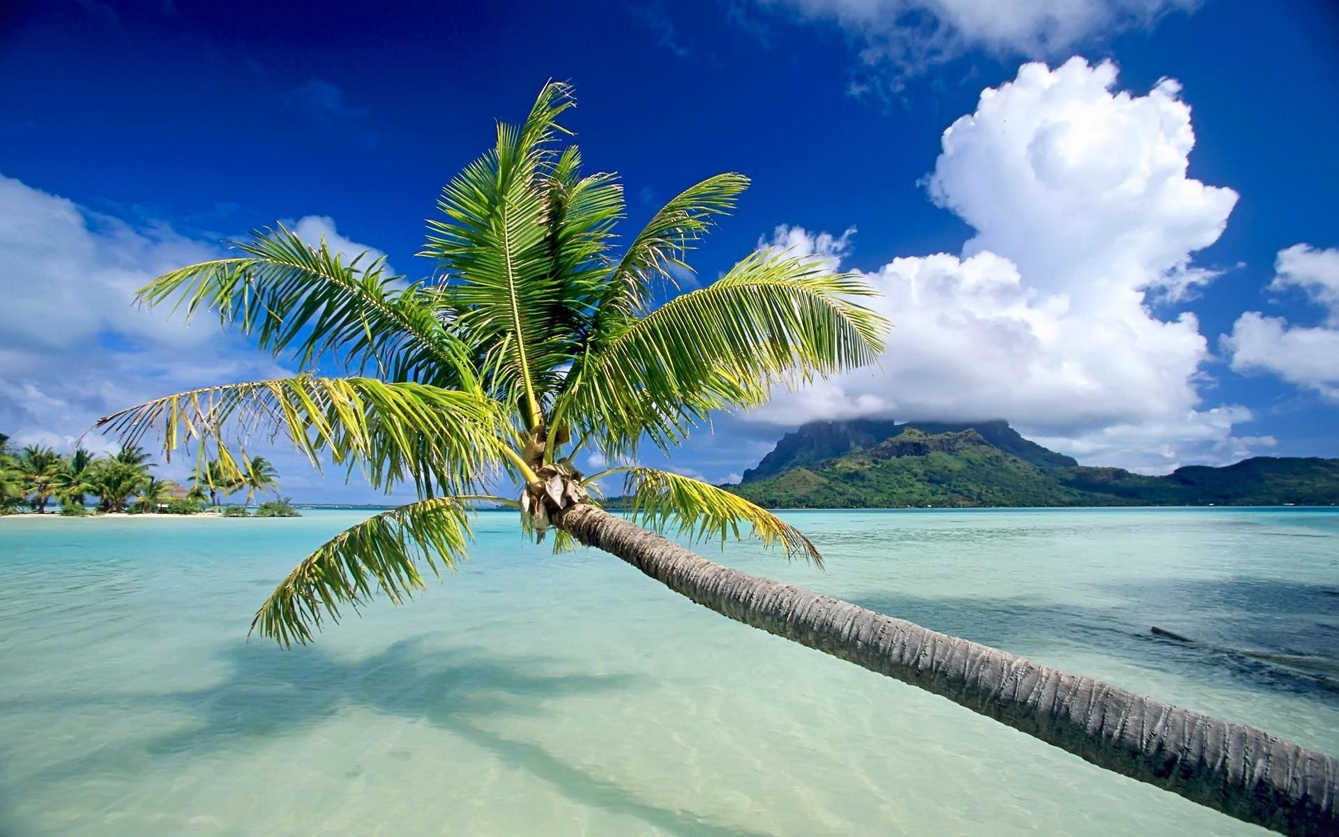 Res: 1920x1200, Bora Bora Wallpaper Beaches Nature Wallpapers