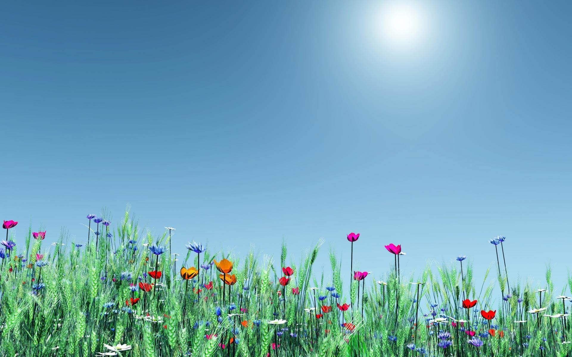 Res: 1920x1200, Spring Desktop Wallpaper Widescreen