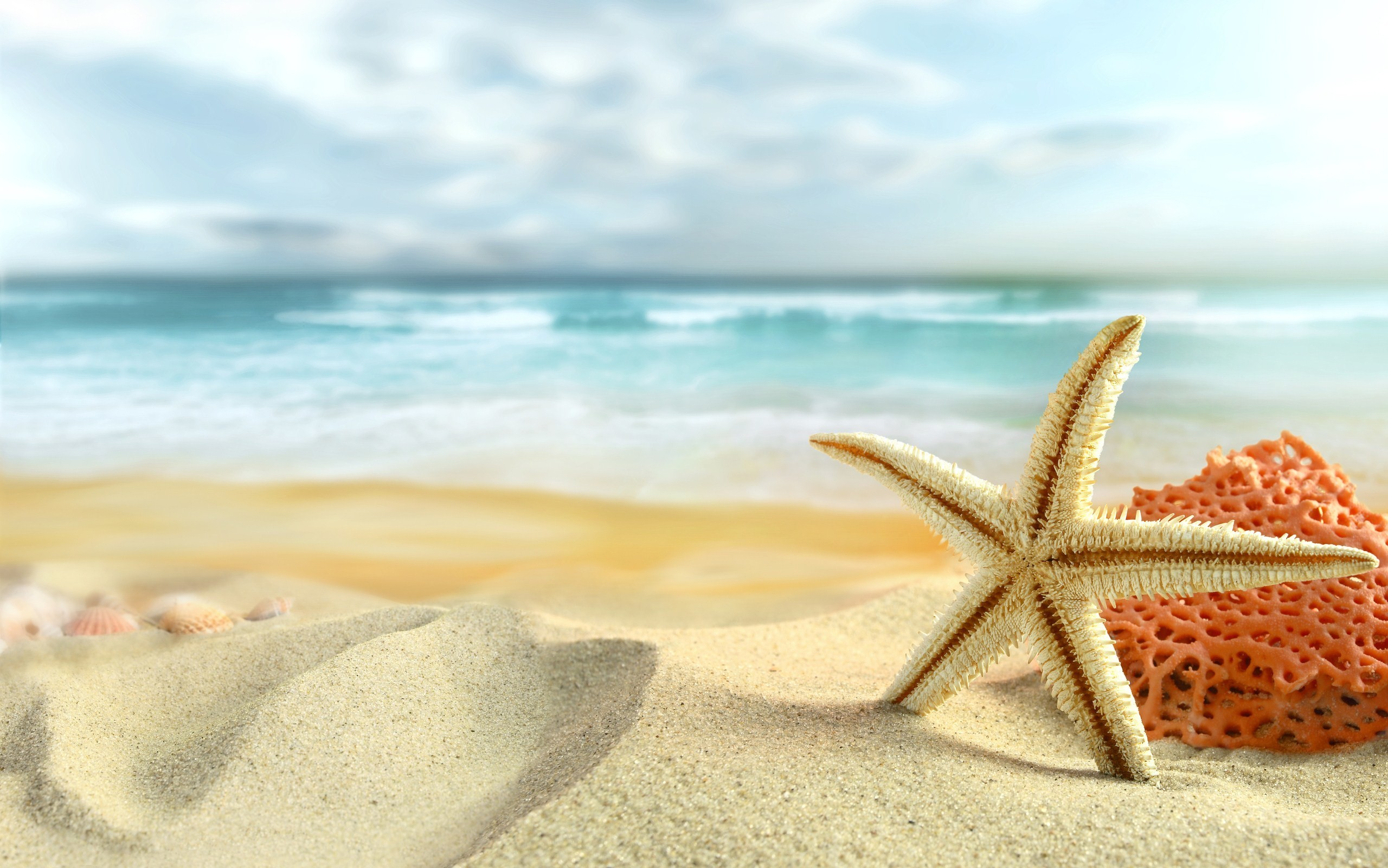 Res: 2560x1600,  Summer-Wallpapers-Image