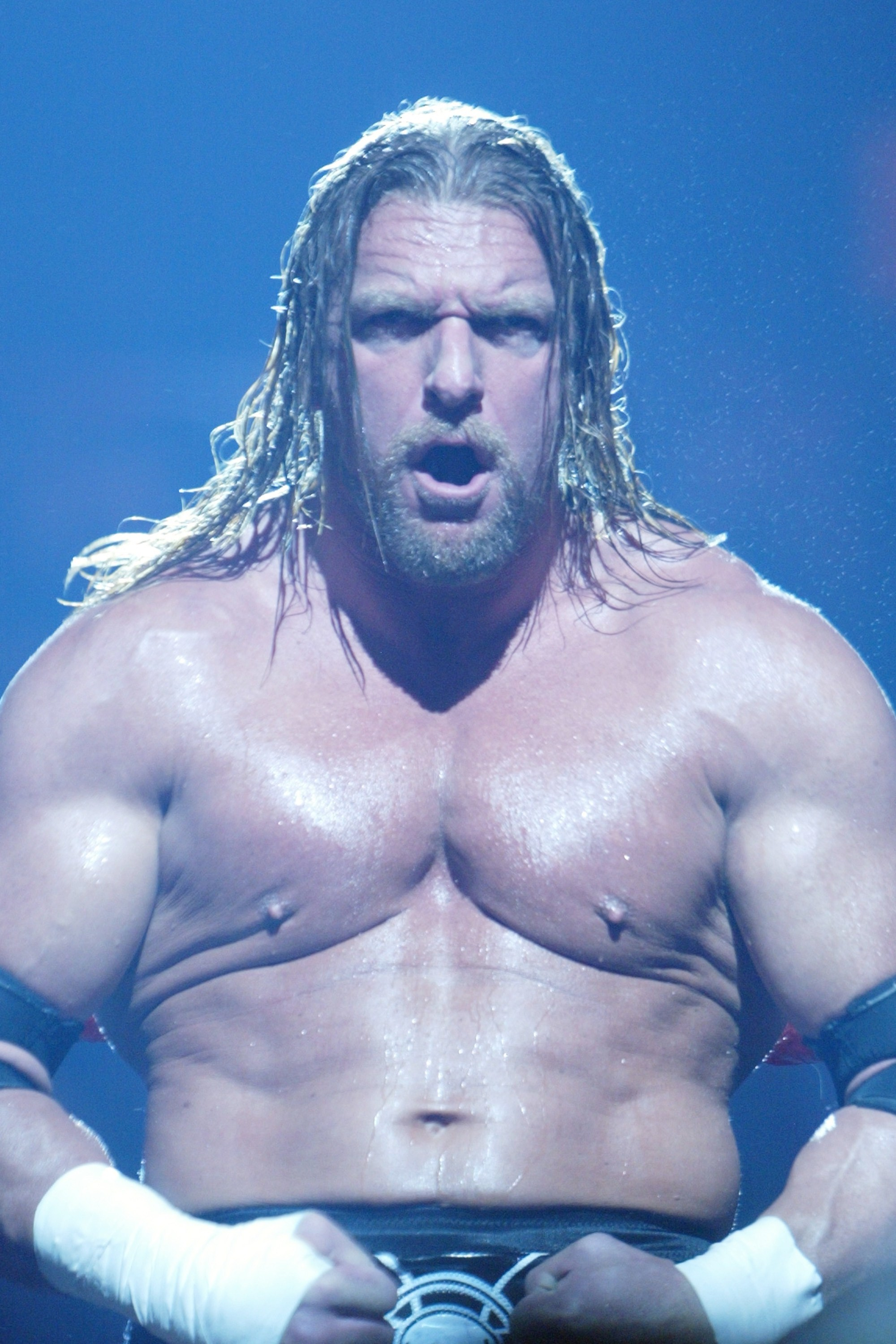 Res: 2000x3000, Triple H height and weight 2018