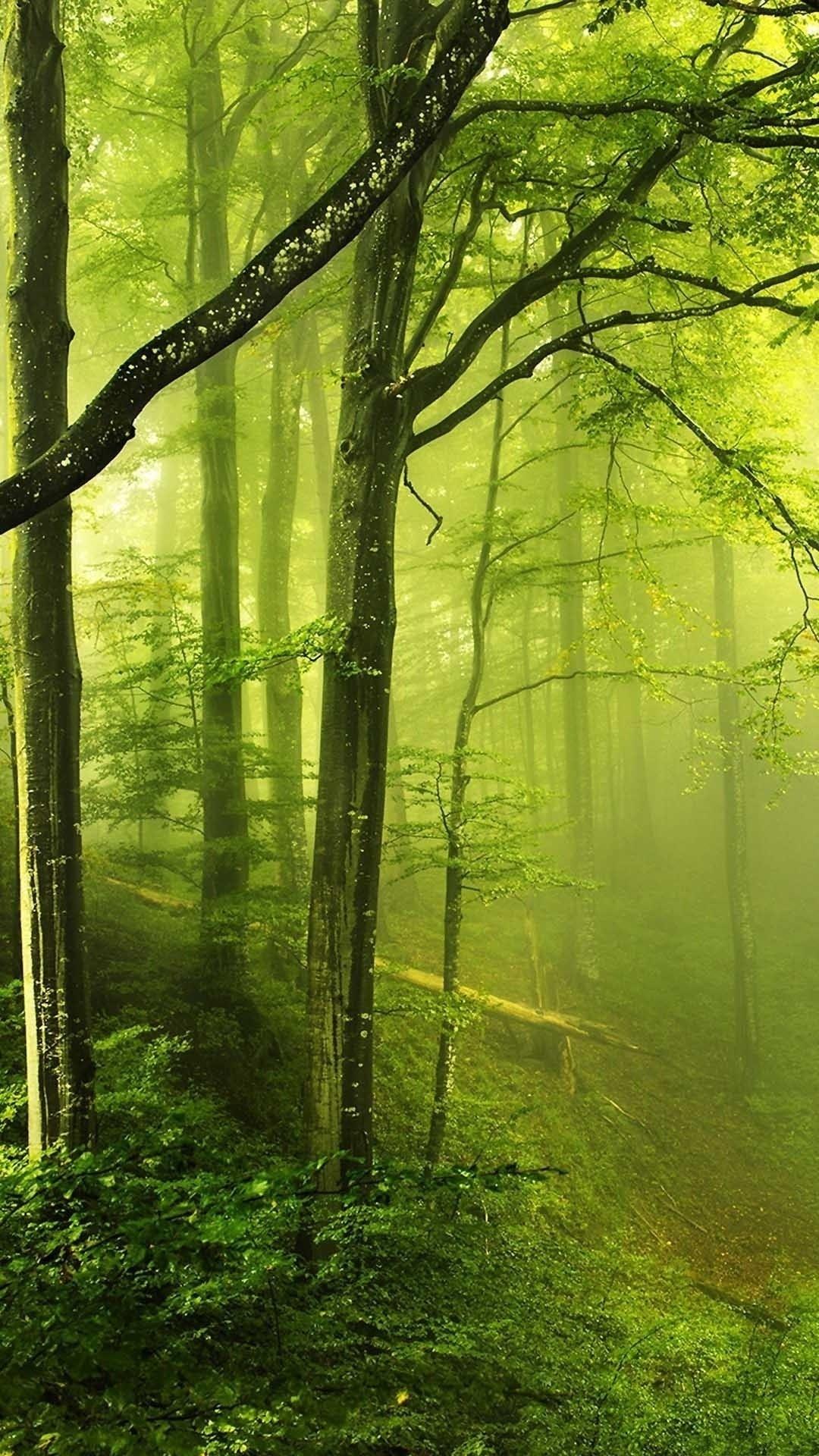 Res: 1080x1920, Nature iPhone 6s Wallpaper