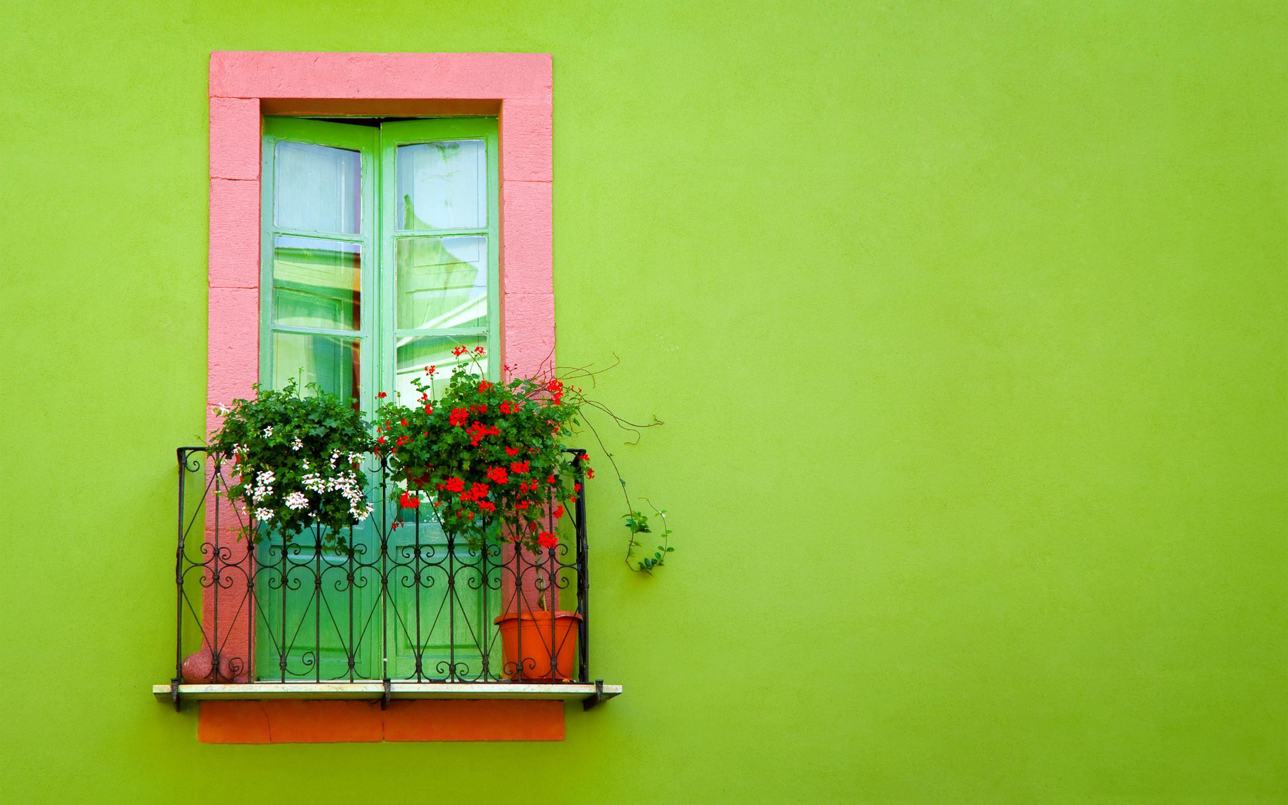 Res: 2560x1600, Man Made - Window Green Flower Plant Artistic Wallpaper