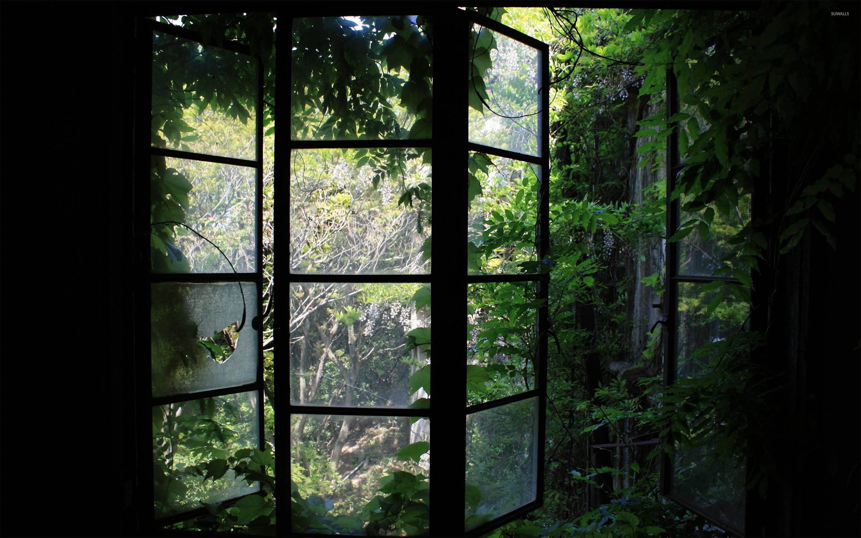 Res: 2880x1800, Greenhouse window wallpaper