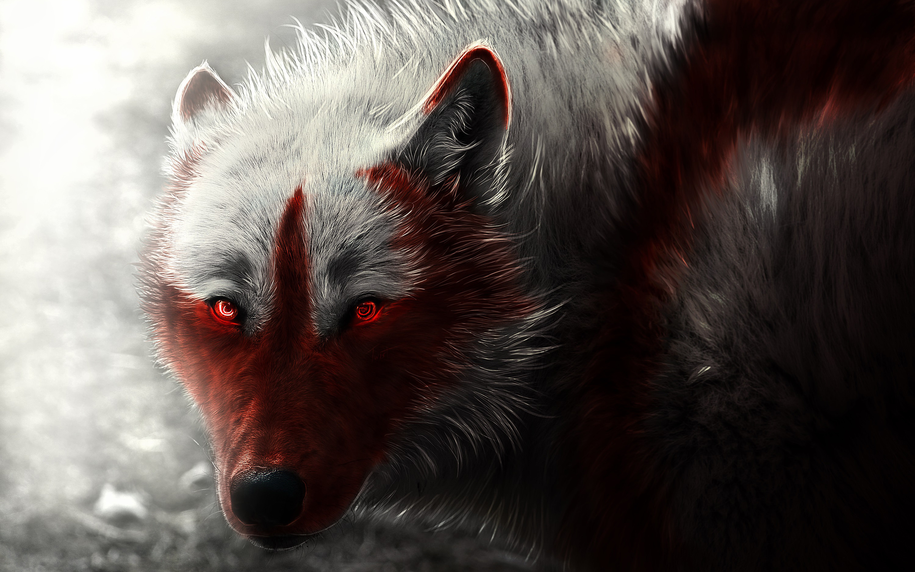 Res: 3000x1875, Scary Wolf Wallpaper