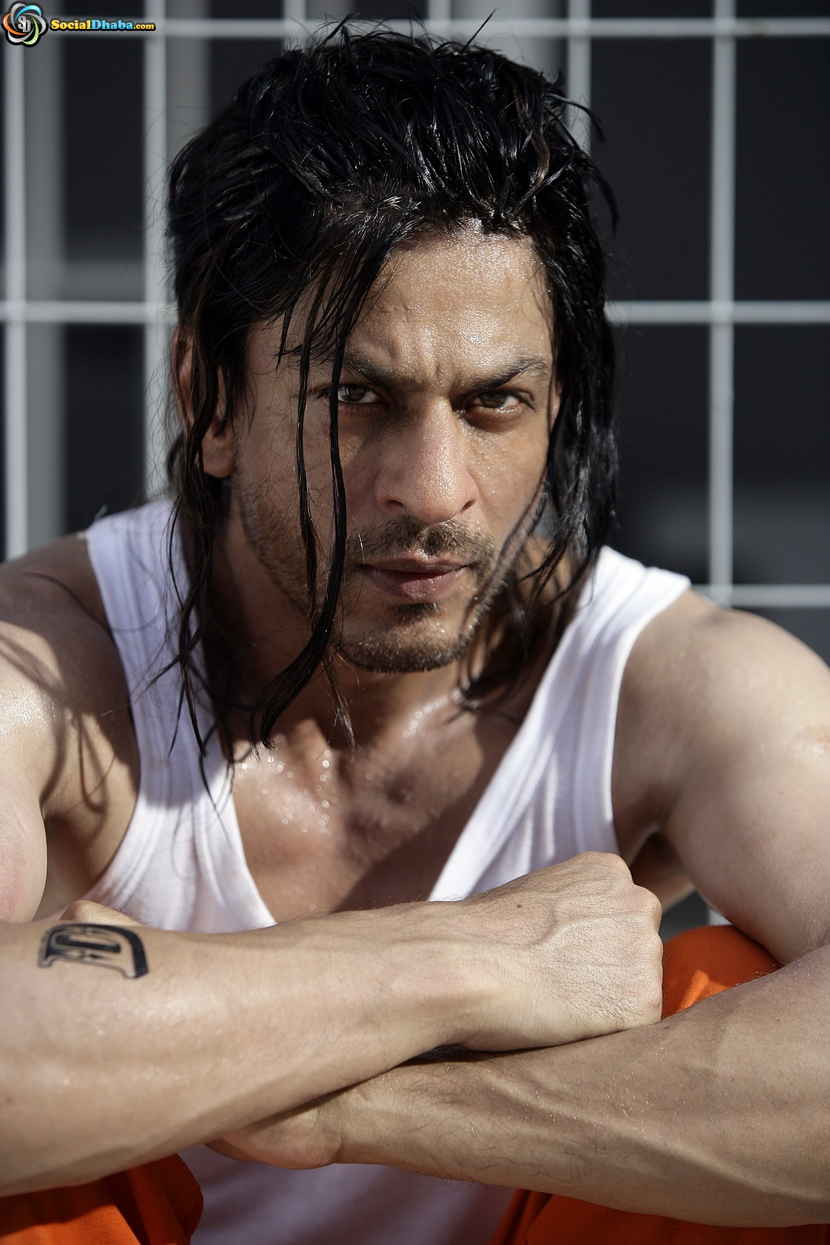 Res: 1667x2500, sharukh khan images Don 2 - Wallpaper HD wallpaper and background photos