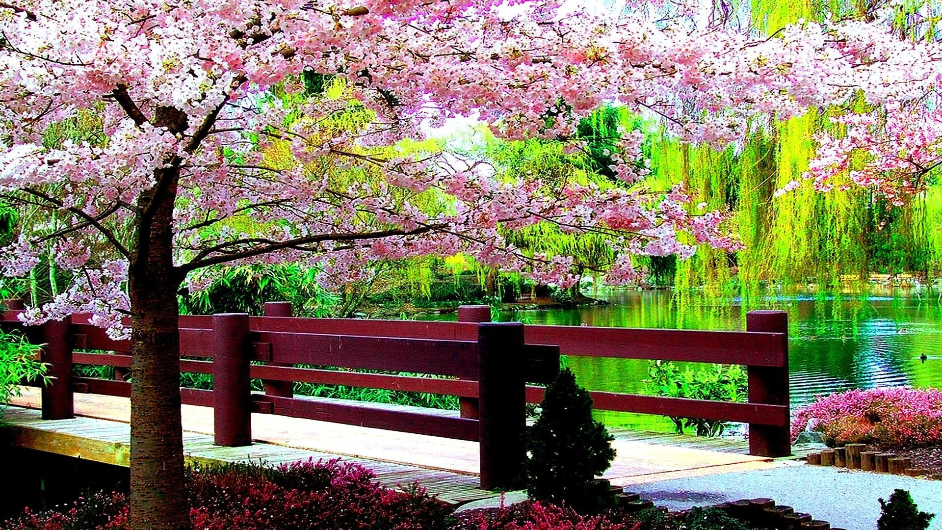 Res: 1920x1080, SPRING PARK WALLPAPER - (#91534) - HD Wallpapers - [wallpapersinhq.pw