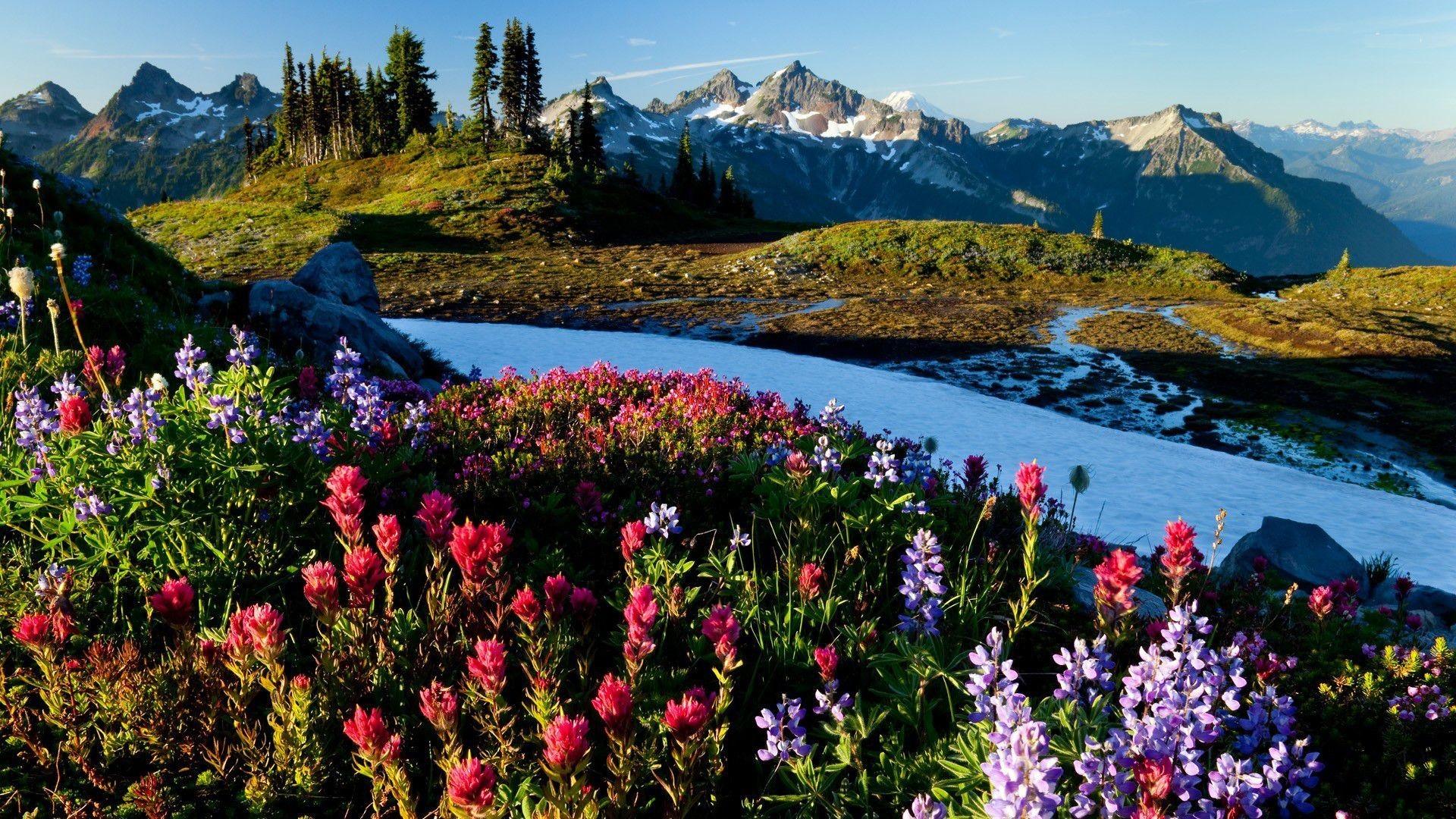 Res: 1920x1080, Spring-mountains-desktop-wallpaper-wallpaper-hd-download