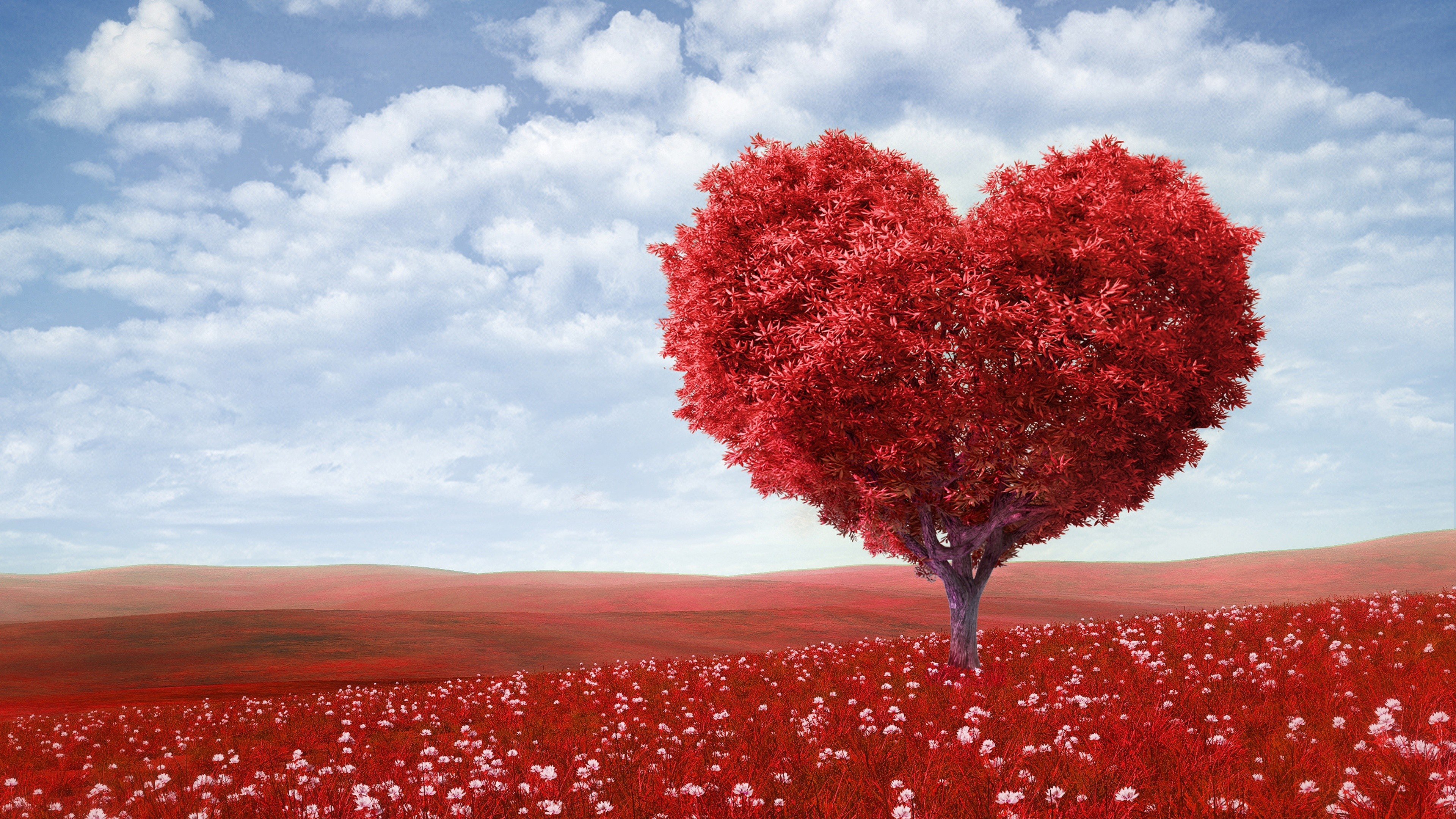 Res: 3840x2160, Red Love Heart Tree Wallpapers