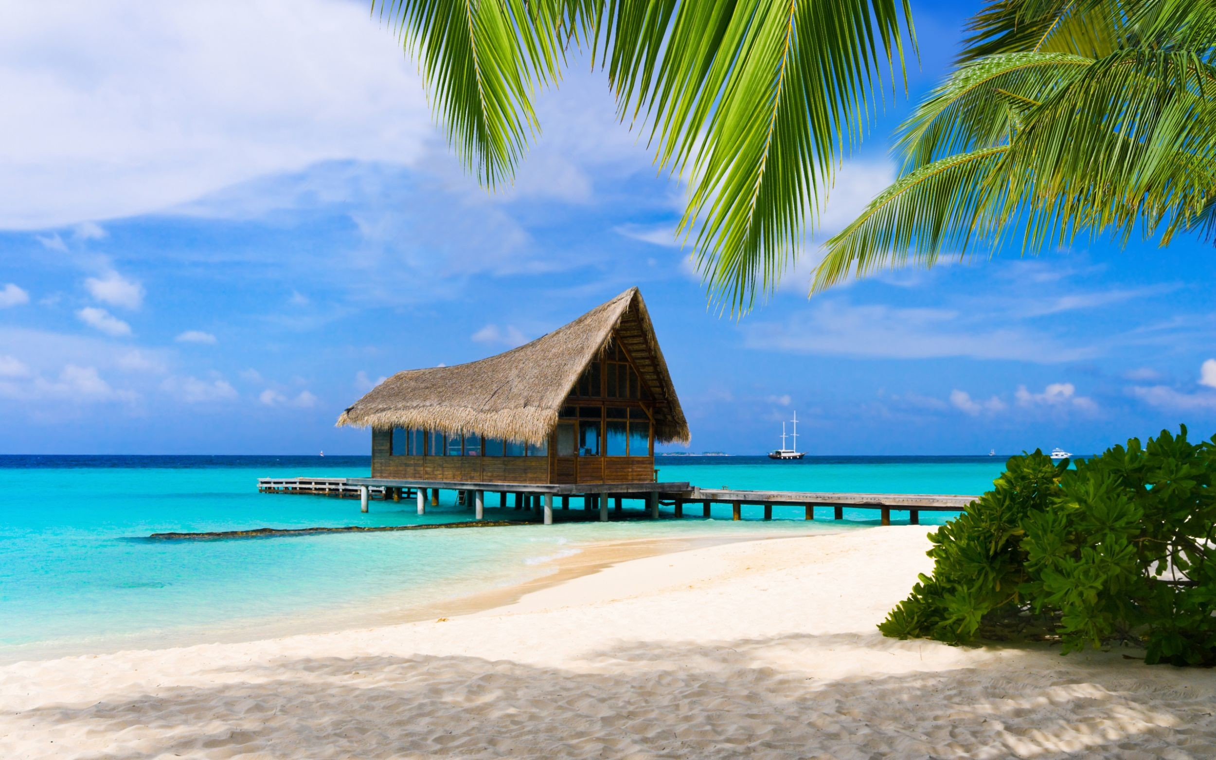 Res: 2500x1562, PC, Laptop Ocean Wallpapers, Wallpapers and Pictures Gallery – download free