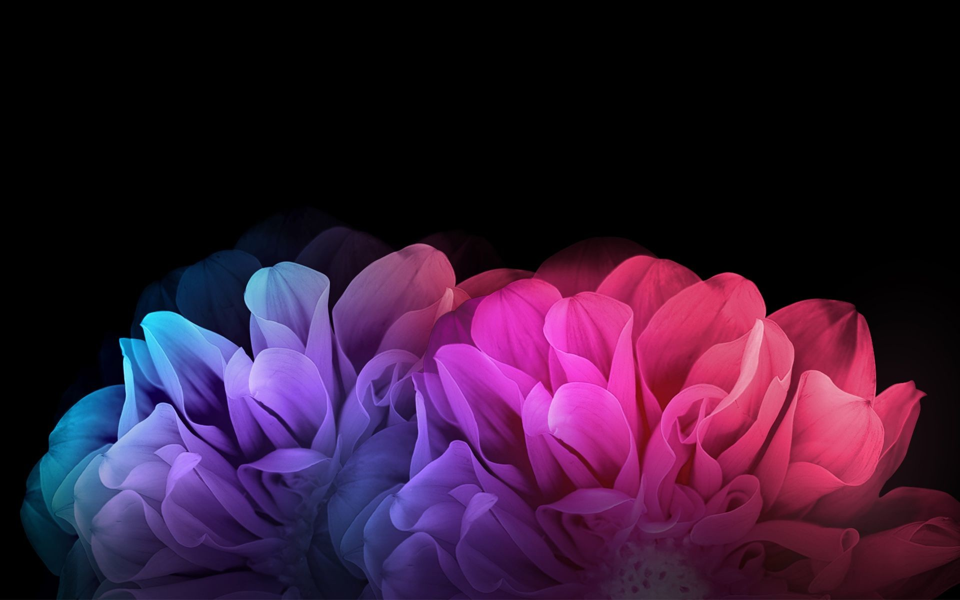 Res: 1920x1200, undefined Dark Colored Wallpapers (35 Wallpapers) | Adorable Wallpapers