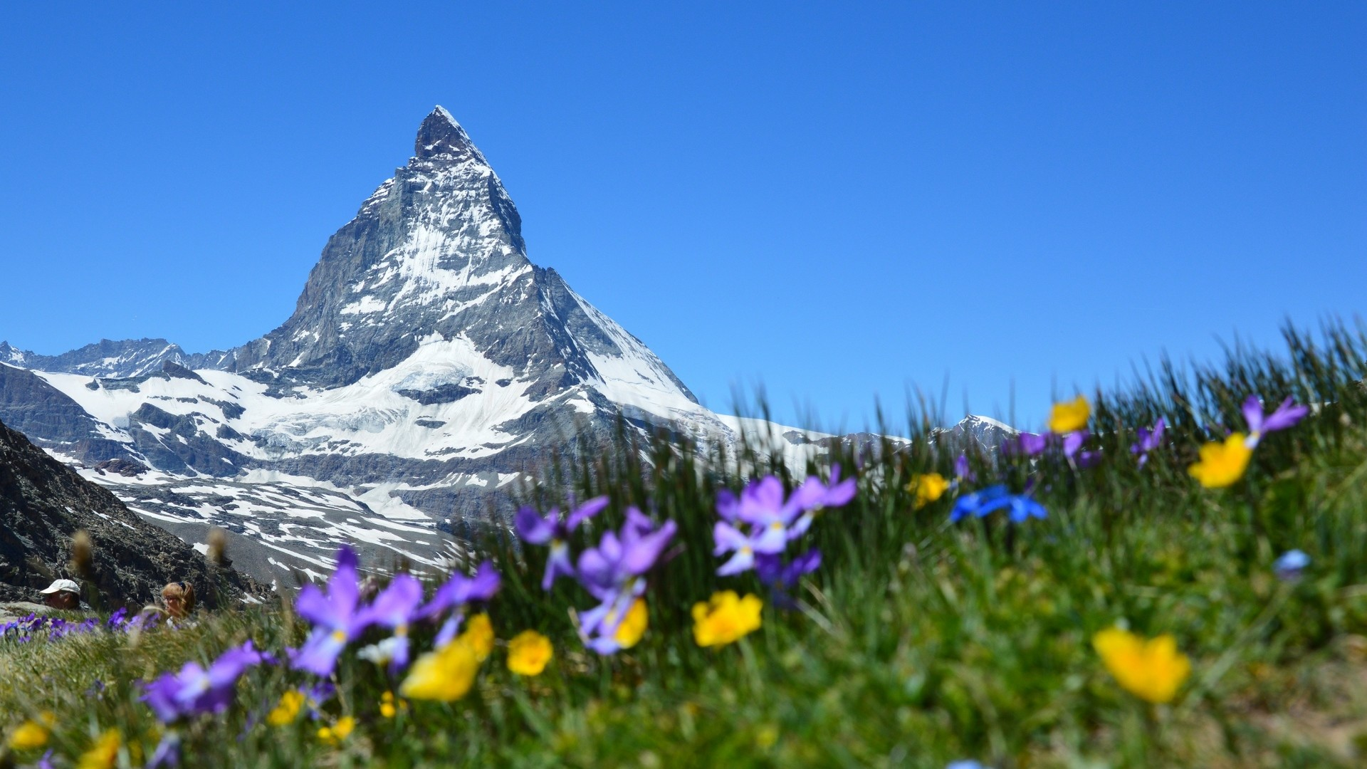 Res: 1920x1080, Impressive Photo: Spring In The Alps Wallpaper,  px