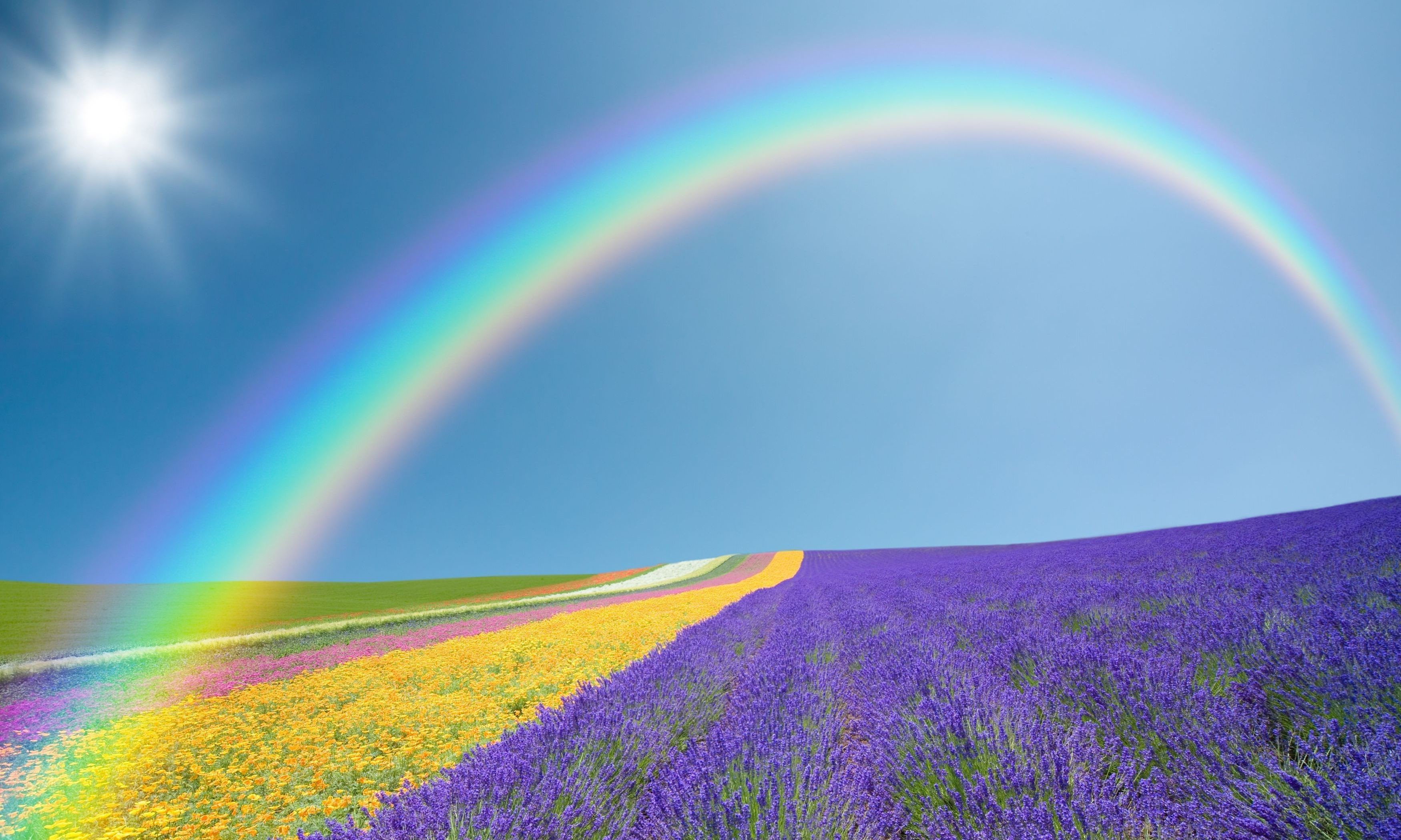 Res: 3500x2100, Rainbow Wallpaper Rainbow Wallpaper Rainbow Wallpaper Rainbow Wallpaper  Rainbow Wallpaper ...