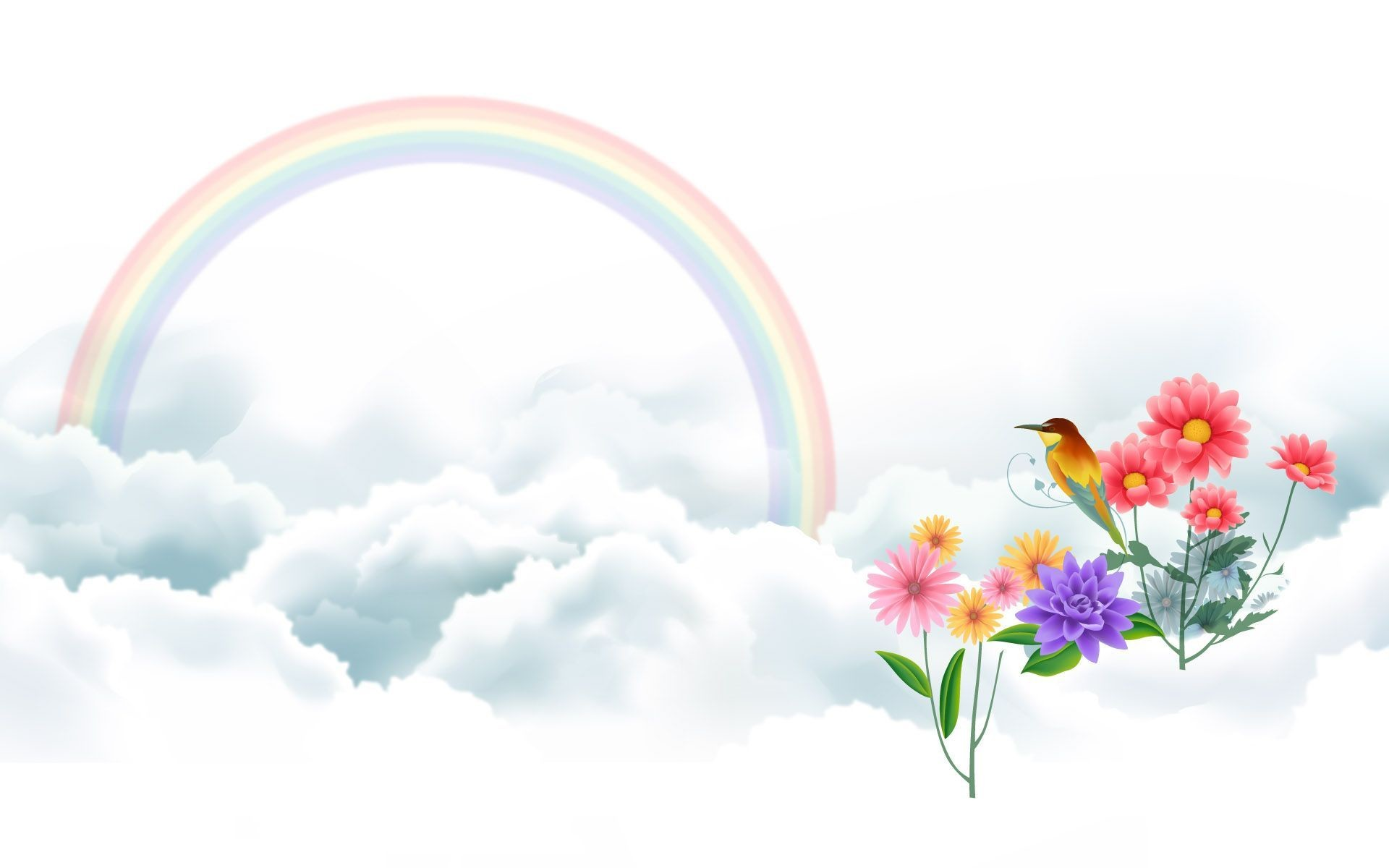Res: 1920x1200, Bird and Rainbow Wallpapers | HD Wallpapers
