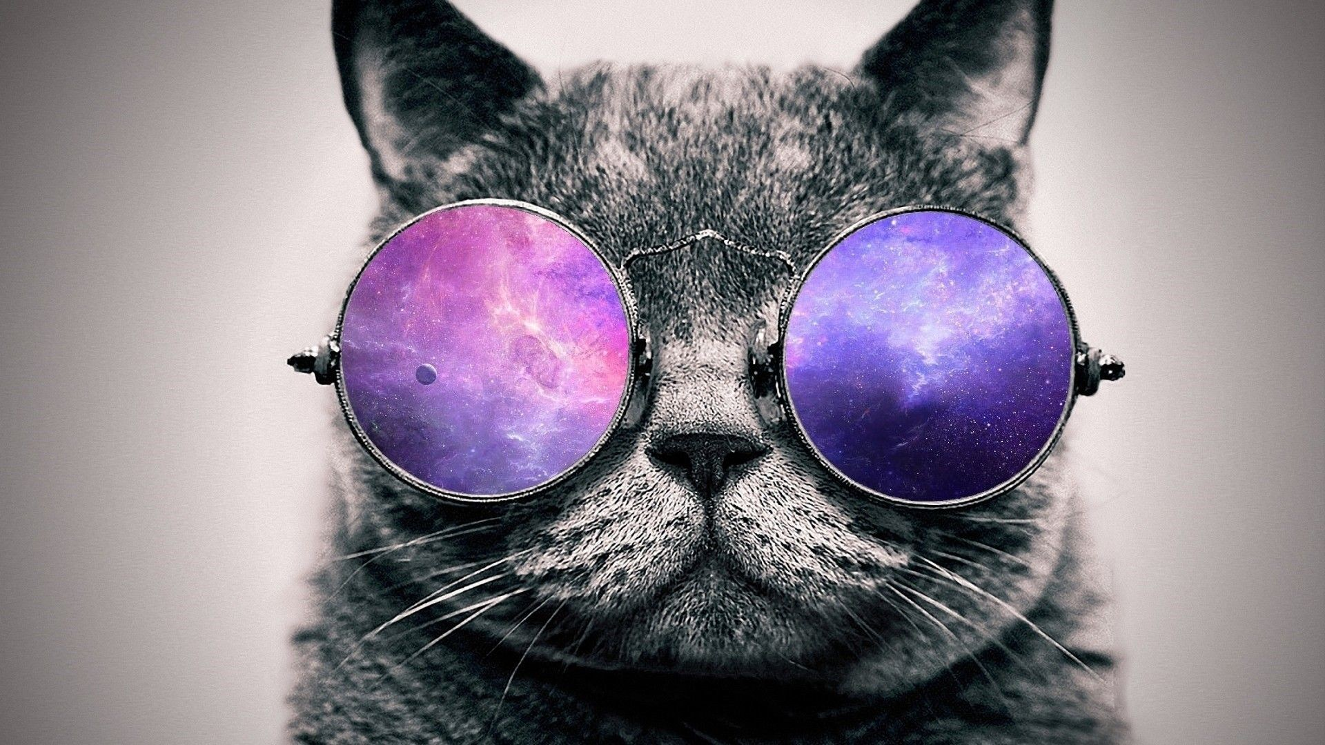Res: 1920x1080, cat with sunglasses wallpaper #576052