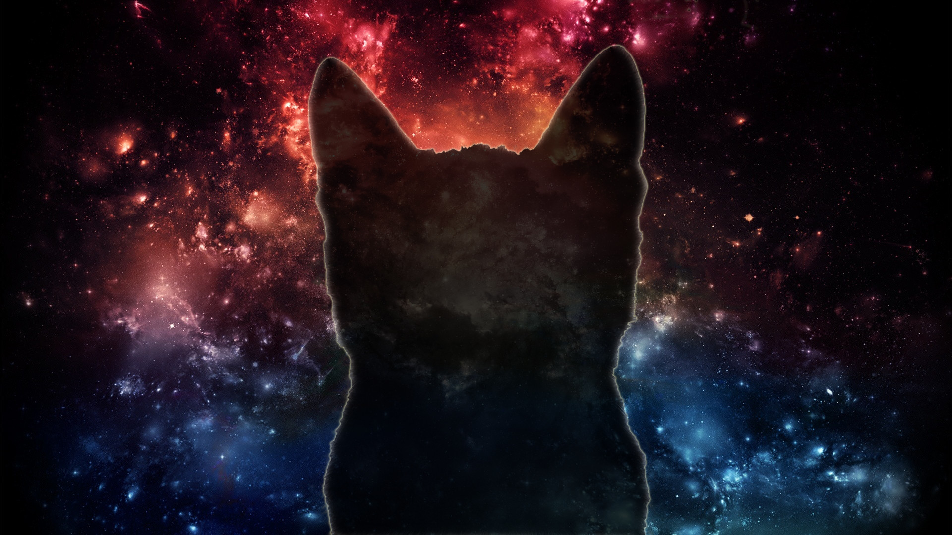 Res: 1920x1080, 94 Entries In Cat Wallpapers 1920×1080 Group Avec Wallpaper 1920×1080  Tumblr Et IMG 104010 73 Wallpaper 1920×1080 Tumblr Sur La Cat Gorie  Interior Design ...
