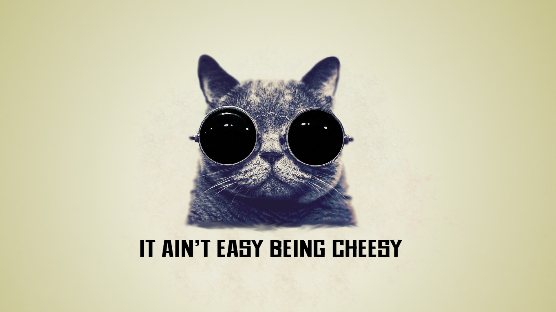 Res: 1920x1080, It ain't easy being cheesy cool cat wallpaper by saitoukazuma on .
