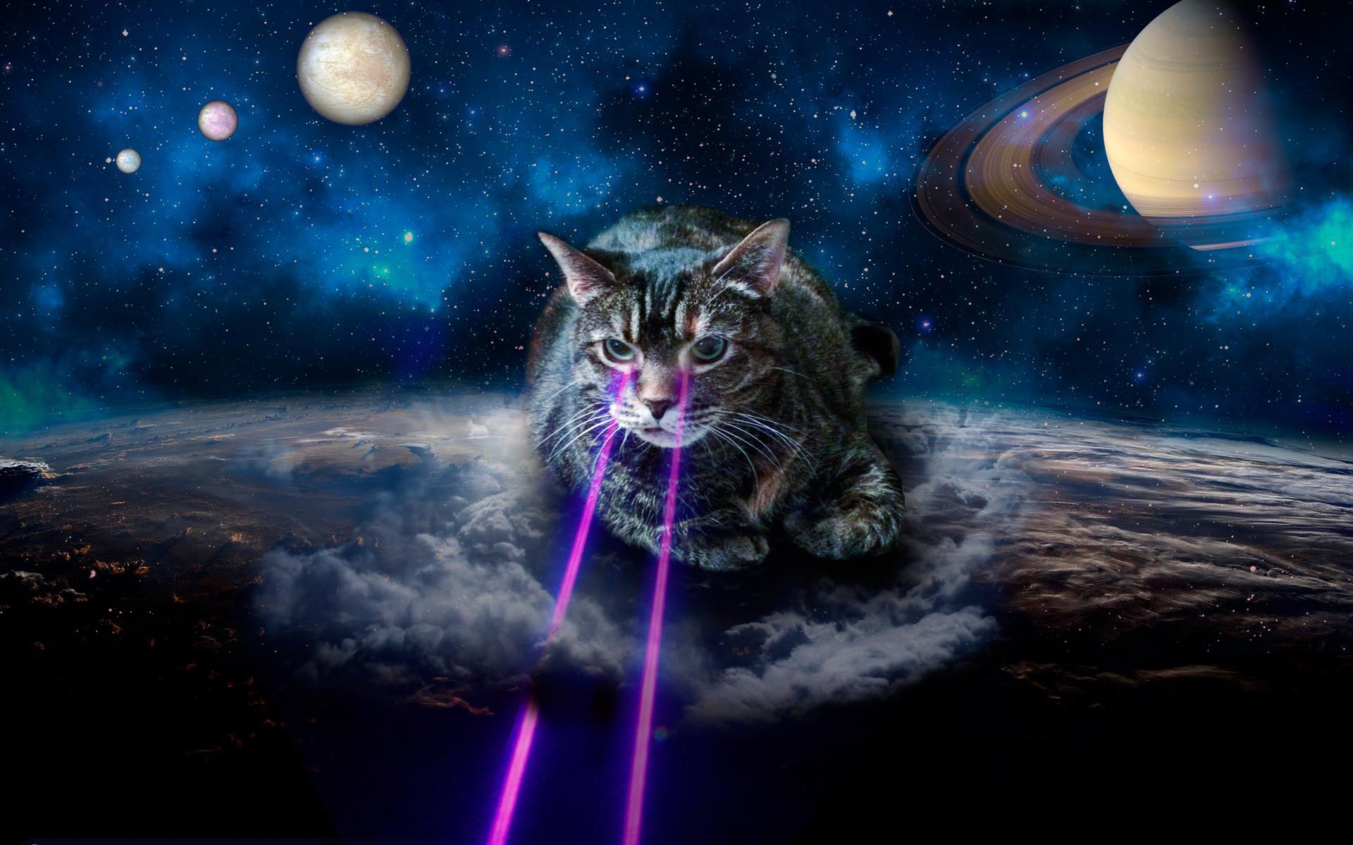 Res: 1920x1200, galaxy cat wallpaper #370478
