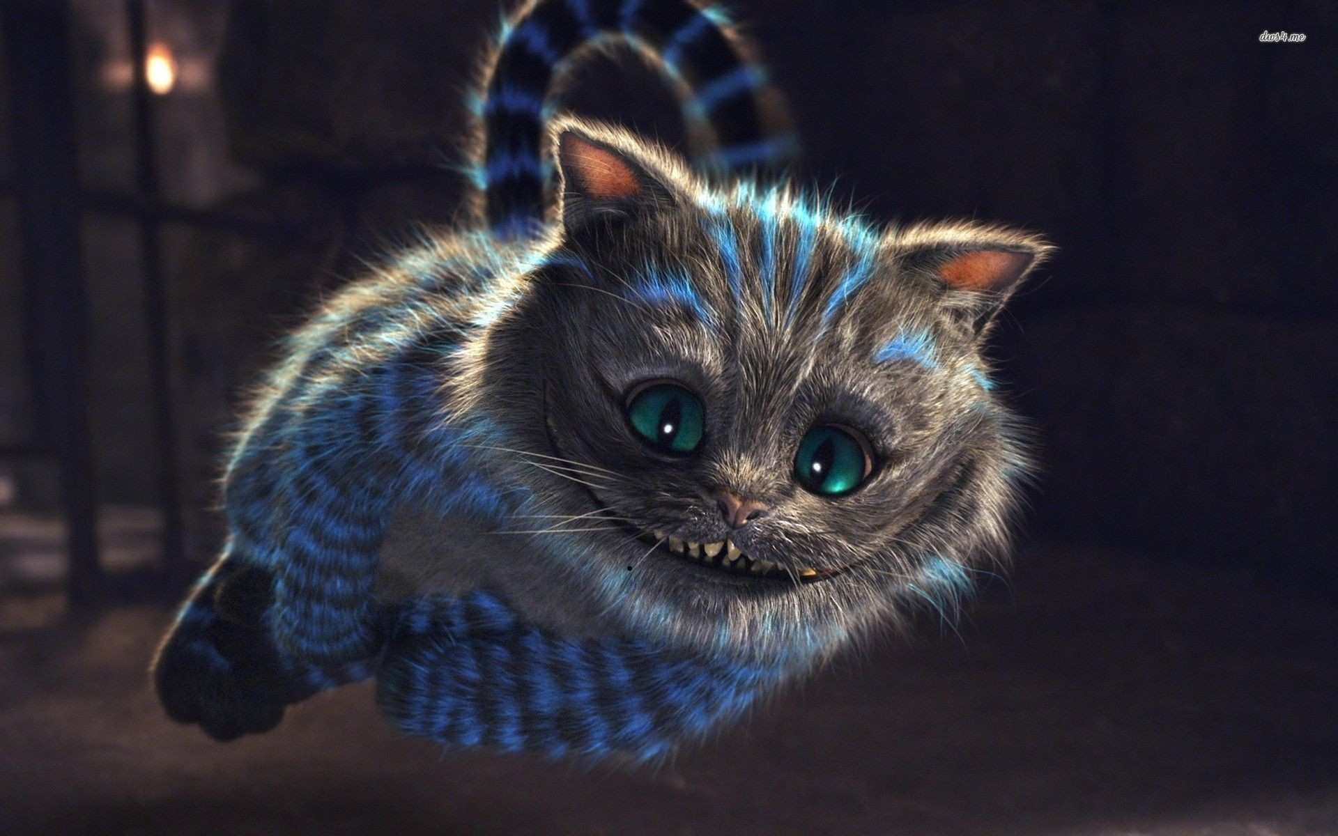 Res: 1920x1200, Alice Wonderland Cheshire Cat Wallpapers