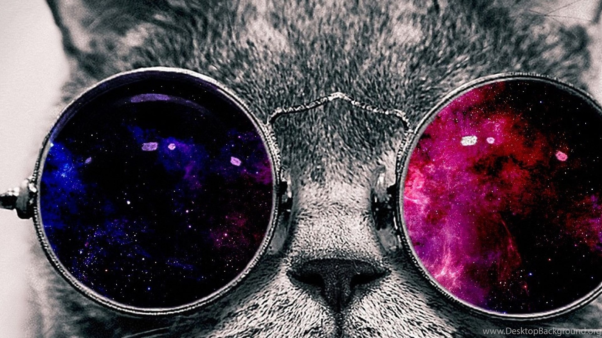Res: 1920x1080, ... Cat With Space Glasses Iphone Wallpaper HD Wallpaper