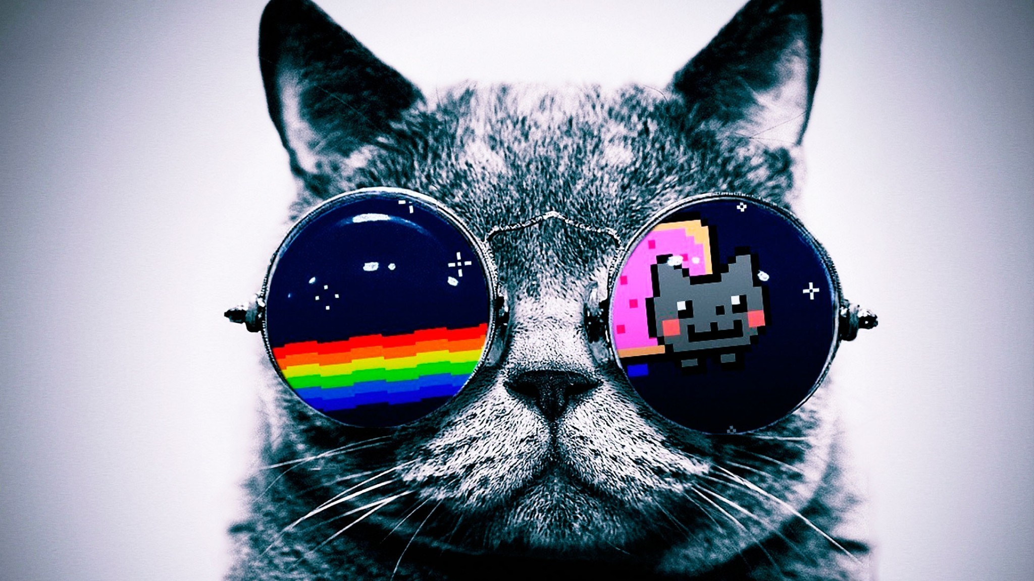 Res: 2048x1152, Animal Wallpapers. Download the following Galaxy Cat ...
