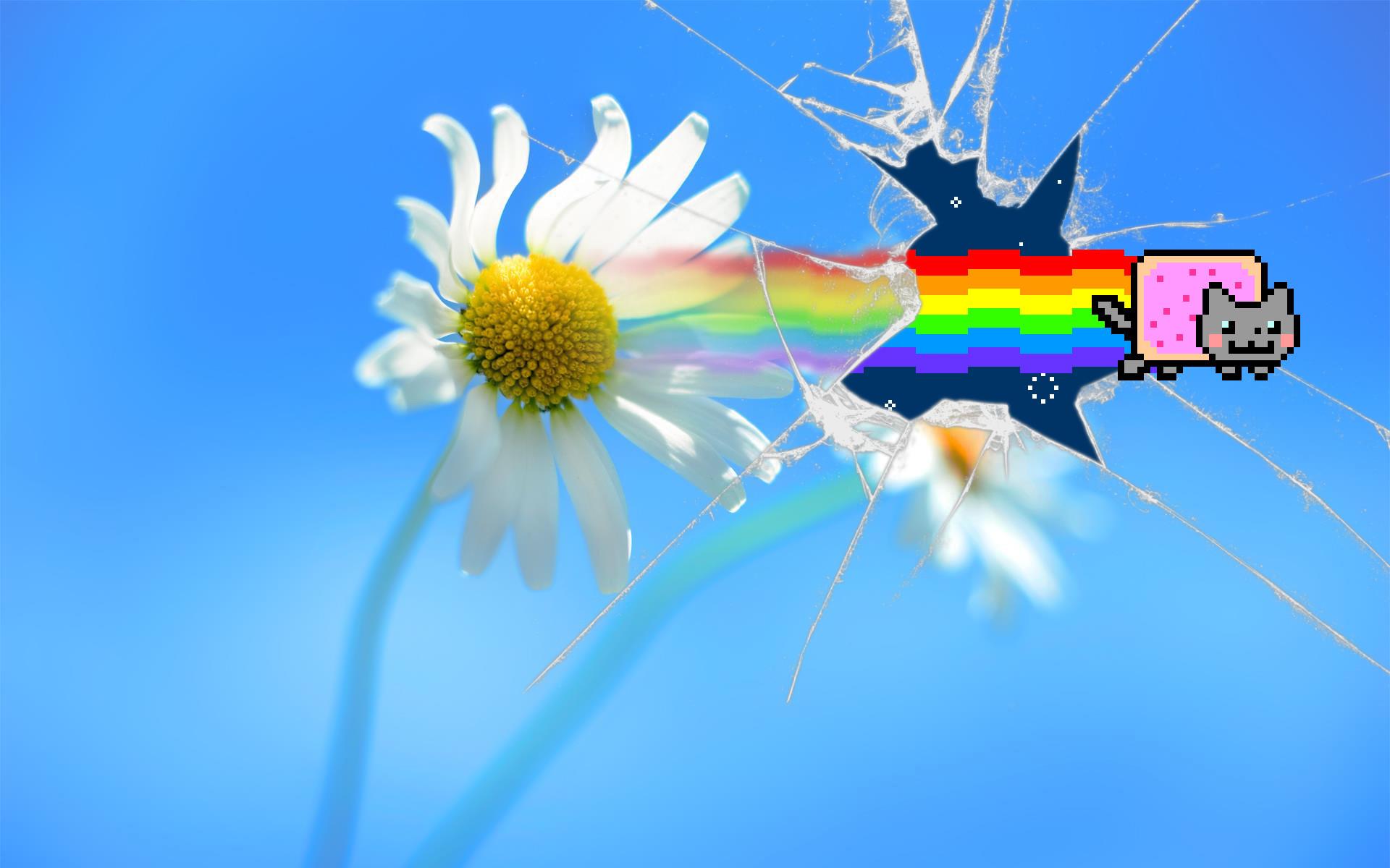 Res: 1920x1200, Nyan Cat Galaxy Wallpaper By Sonyrootkit On Deviantart
