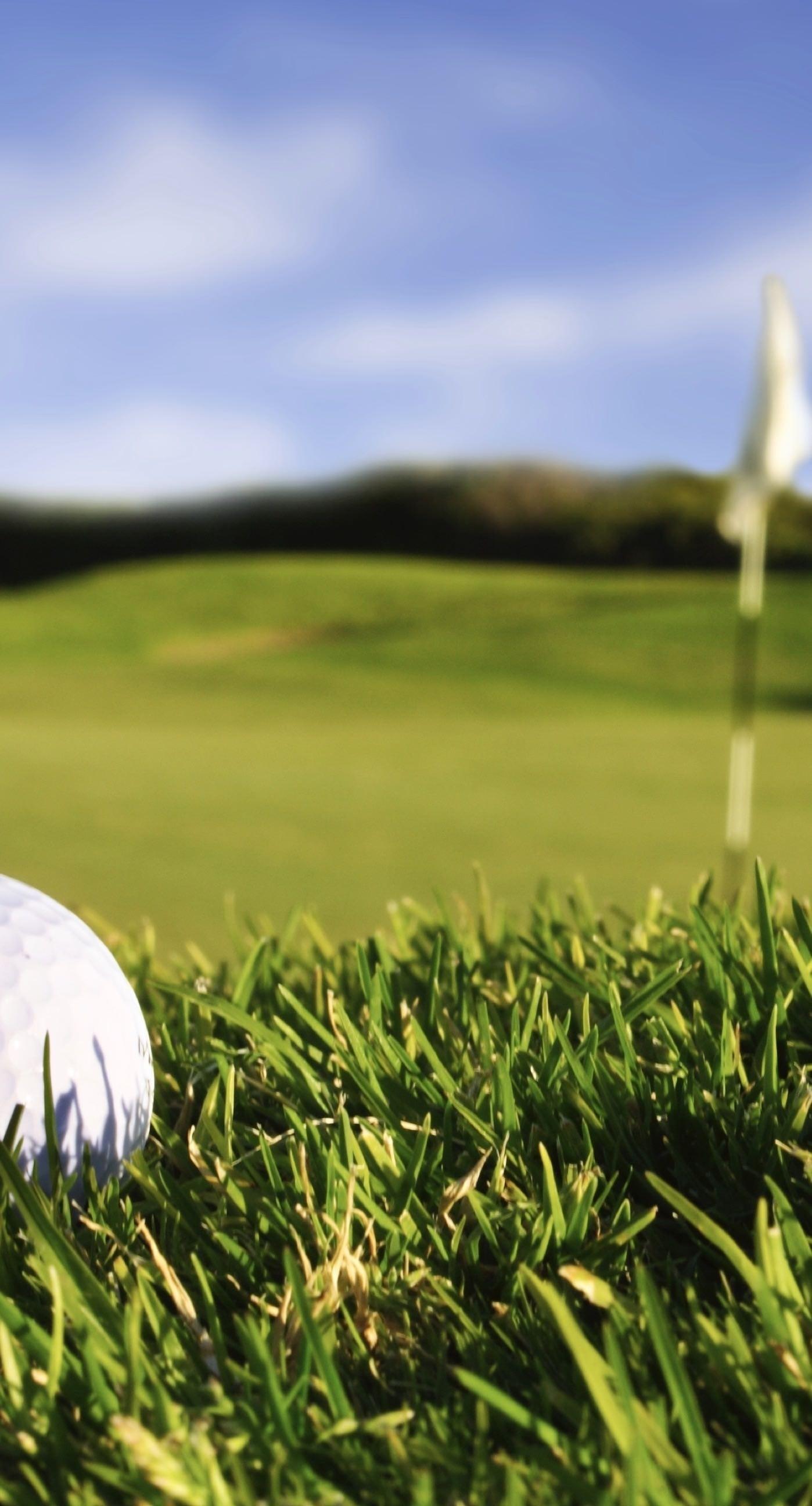 Res: 1398x2592, OZ931 Titleist Golf Wallpaper, ModaFinilsale.com