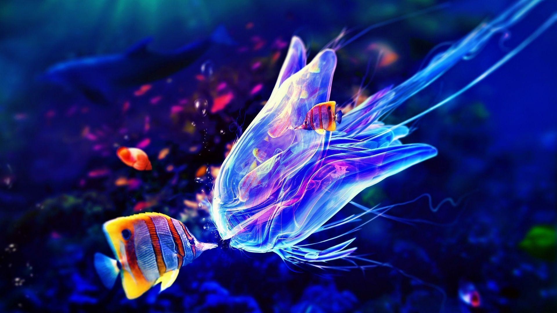 Res: 1920x1080, Box Jellyfish HD Wallpapers