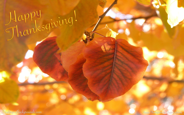 Res: 2880x1800, Happy Thanksgiving
