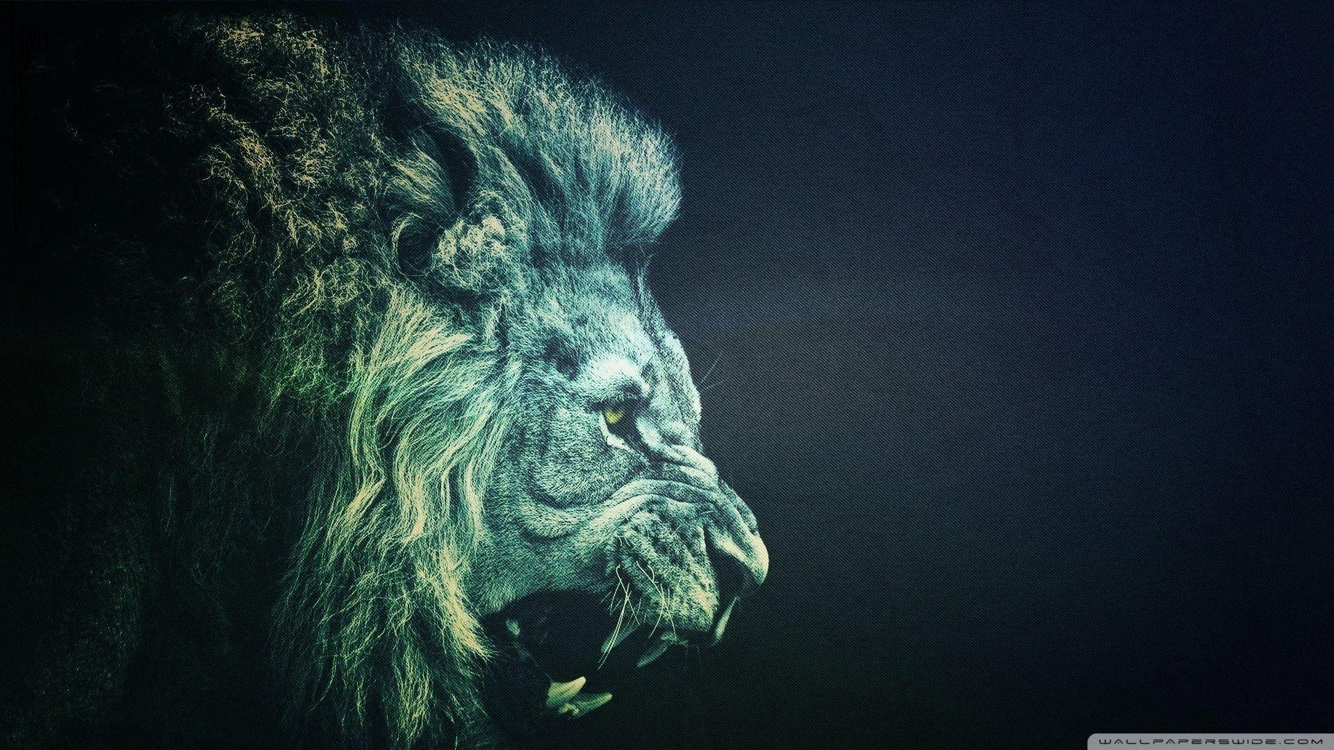 Res: 1920x1080, Image for LION Wallpaper Full HD 1080p HJ7