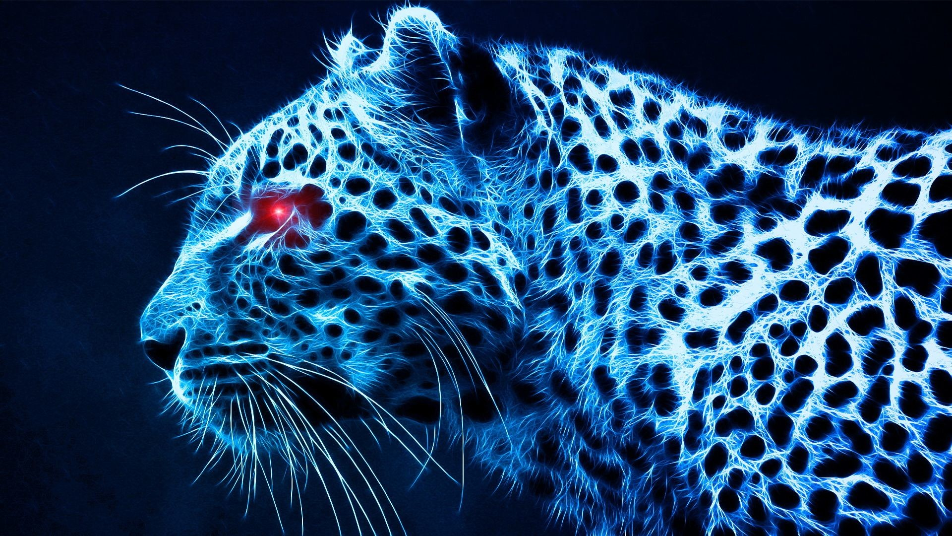 Res: 1920x1080, WallpapersCastle.com | Cheetah Wallpapers Free Download | Page 1