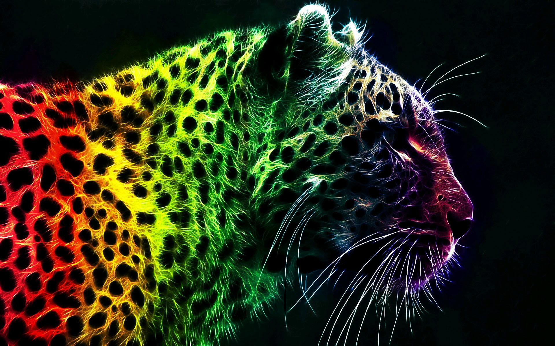 Res: 1920x1200, Colorful Leopard Backgrounds wallpaper Colorful Leopard Backgrounds
