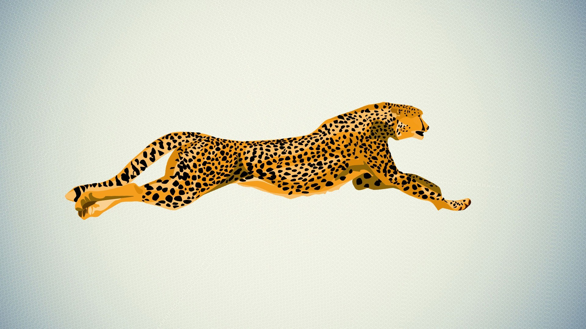Res: 1920x1080, Cheetah Wallpapers HQ 29037