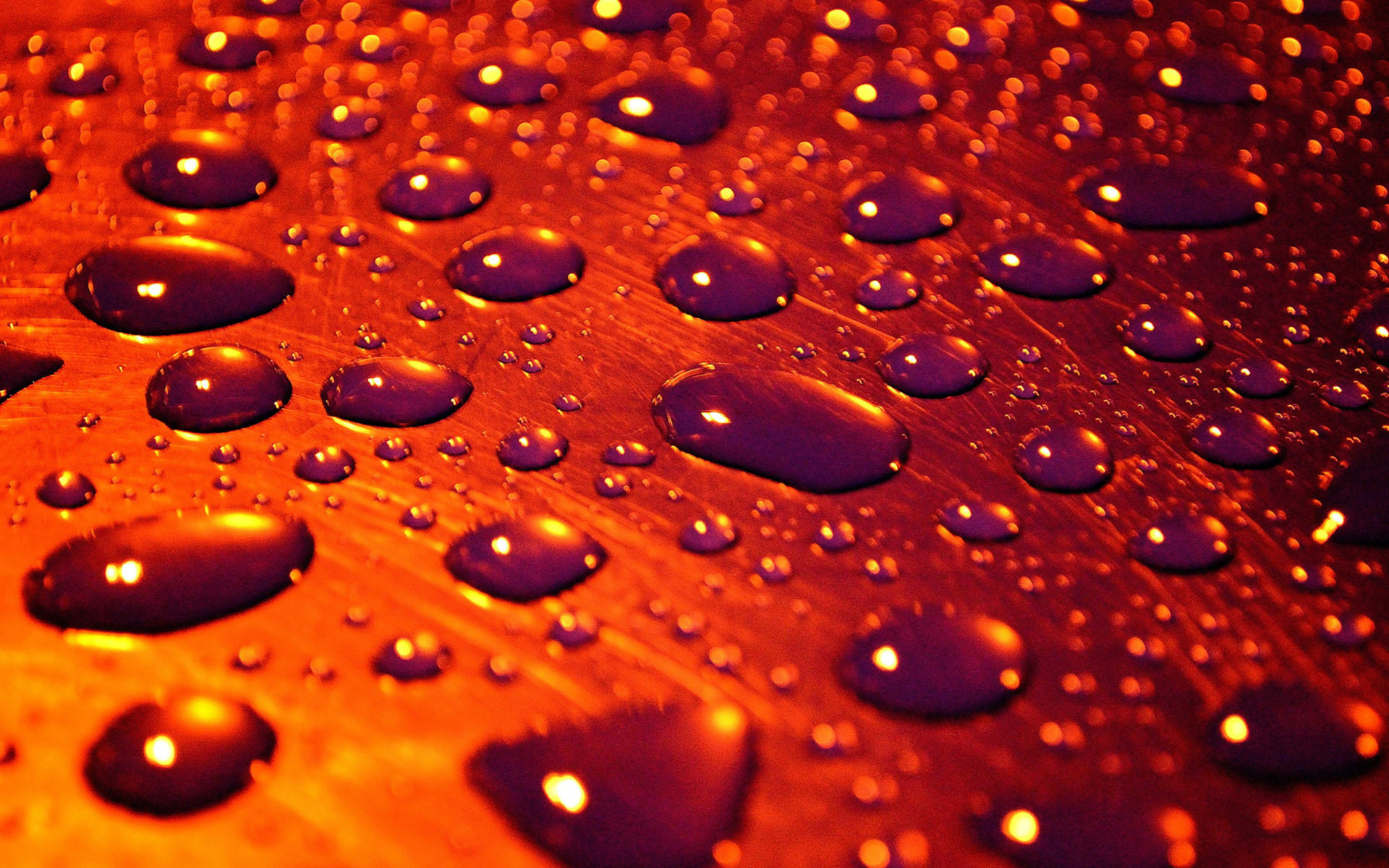 Res: 1920x1200, Water Droplets Wallpapers 12 - 1920 X 1200